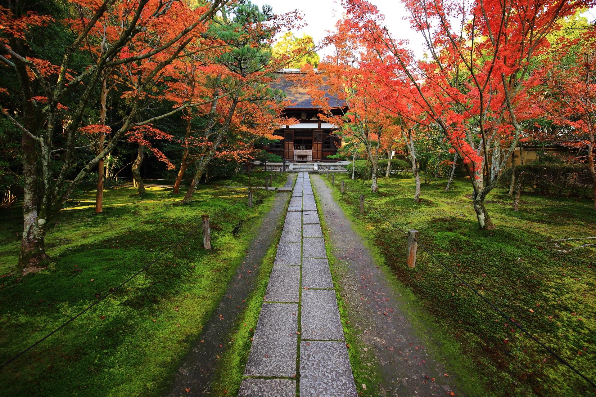 本堂と紅葉