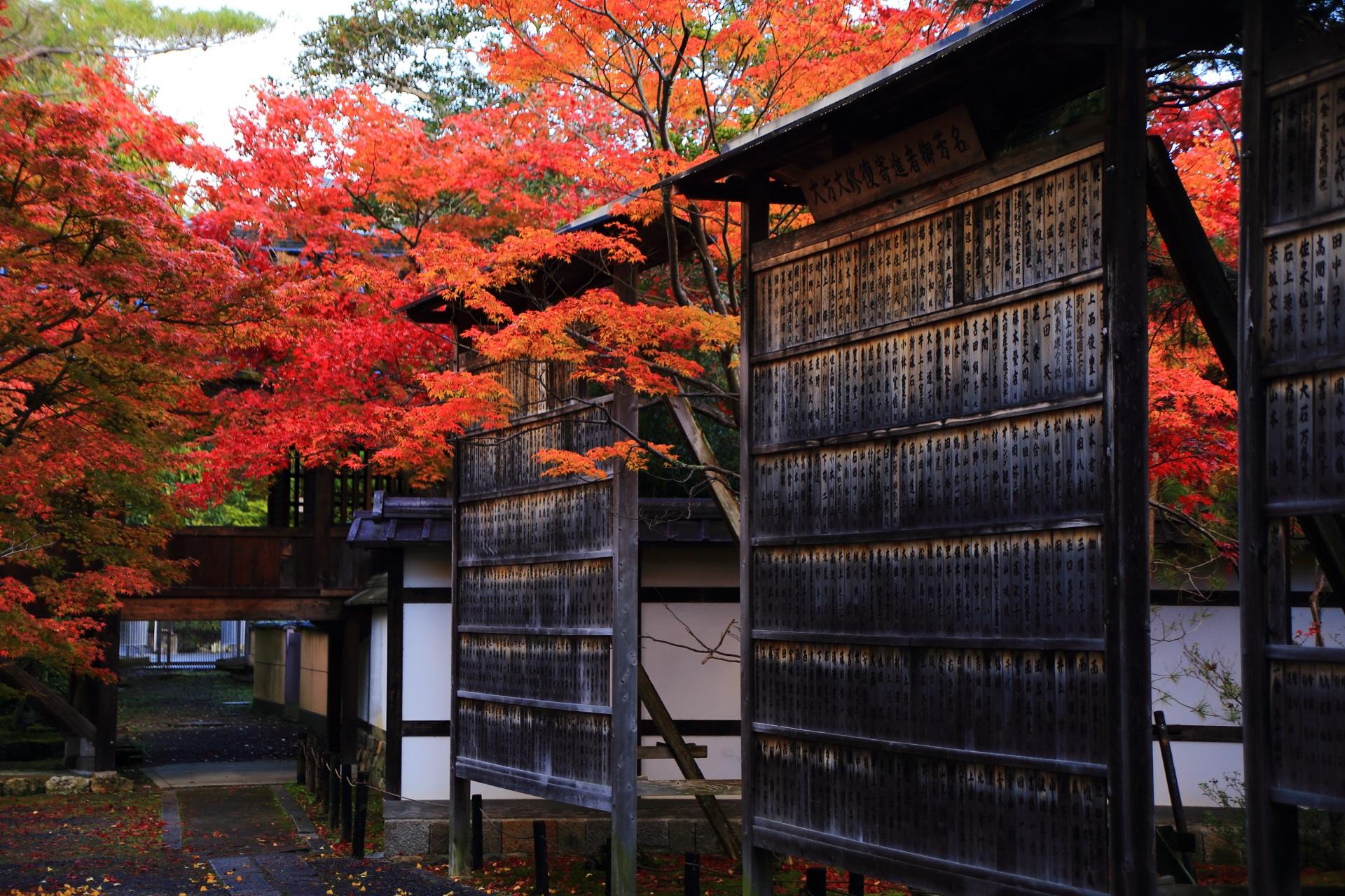 清涼寺の素晴らしすぎる紅葉と秋の情景
