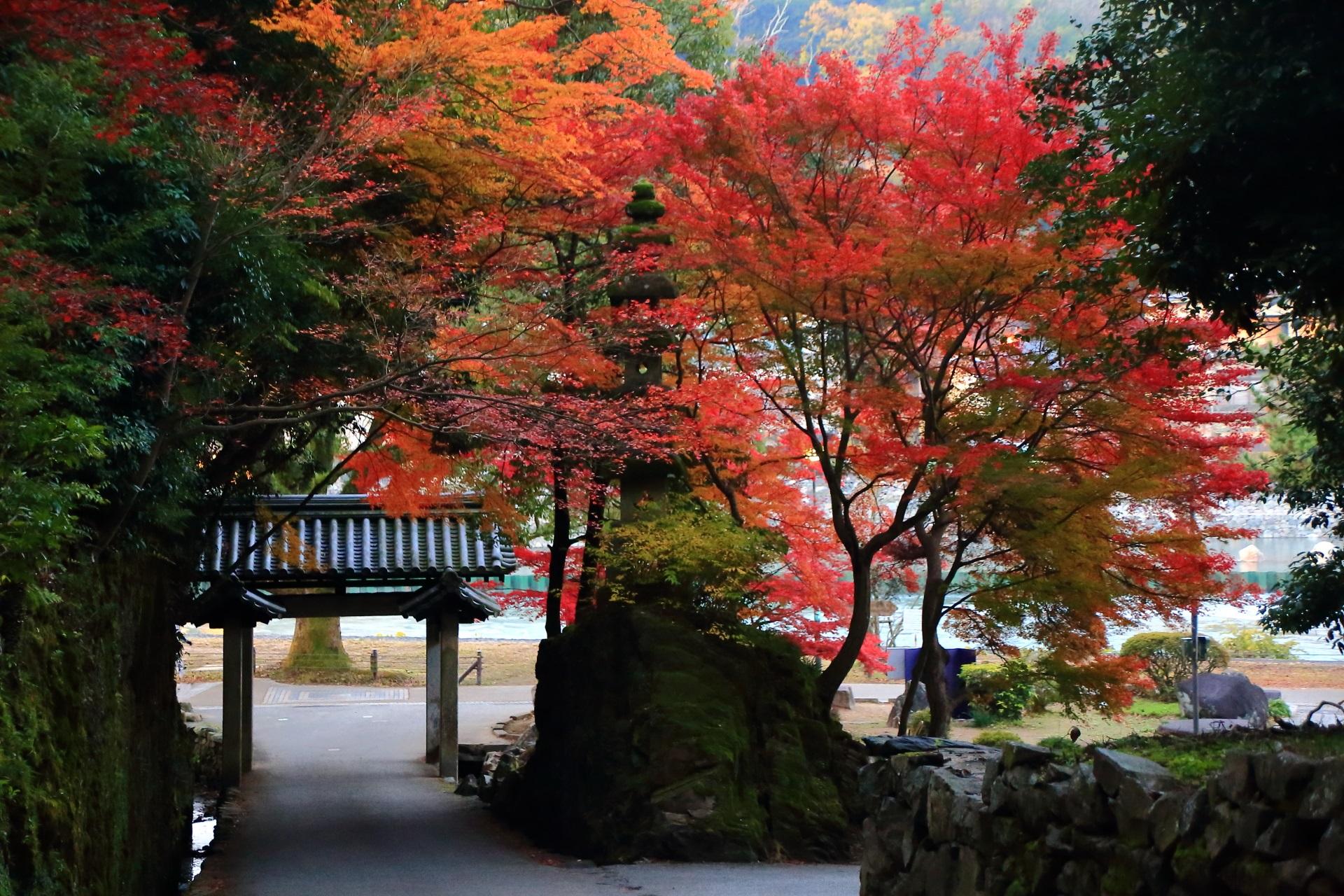 琴坂から眺めた興聖寺の石門と多彩な紅葉