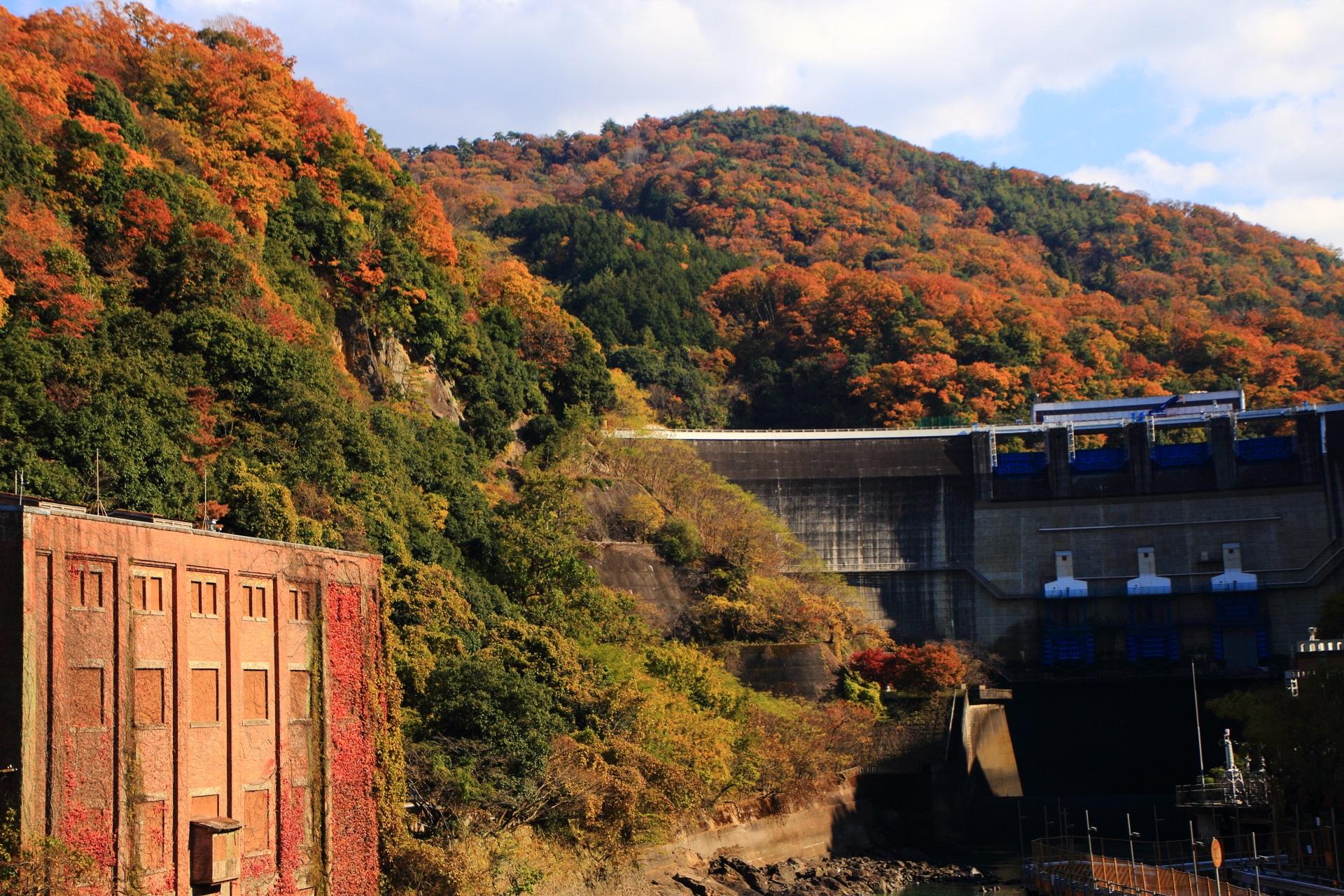 天ヶ瀬ダムや山々の素晴らしい紅葉や秋の情景