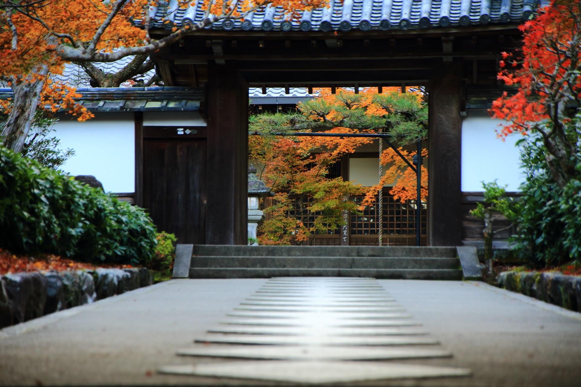 山門奥に見える本堂と鮮やかな紅葉