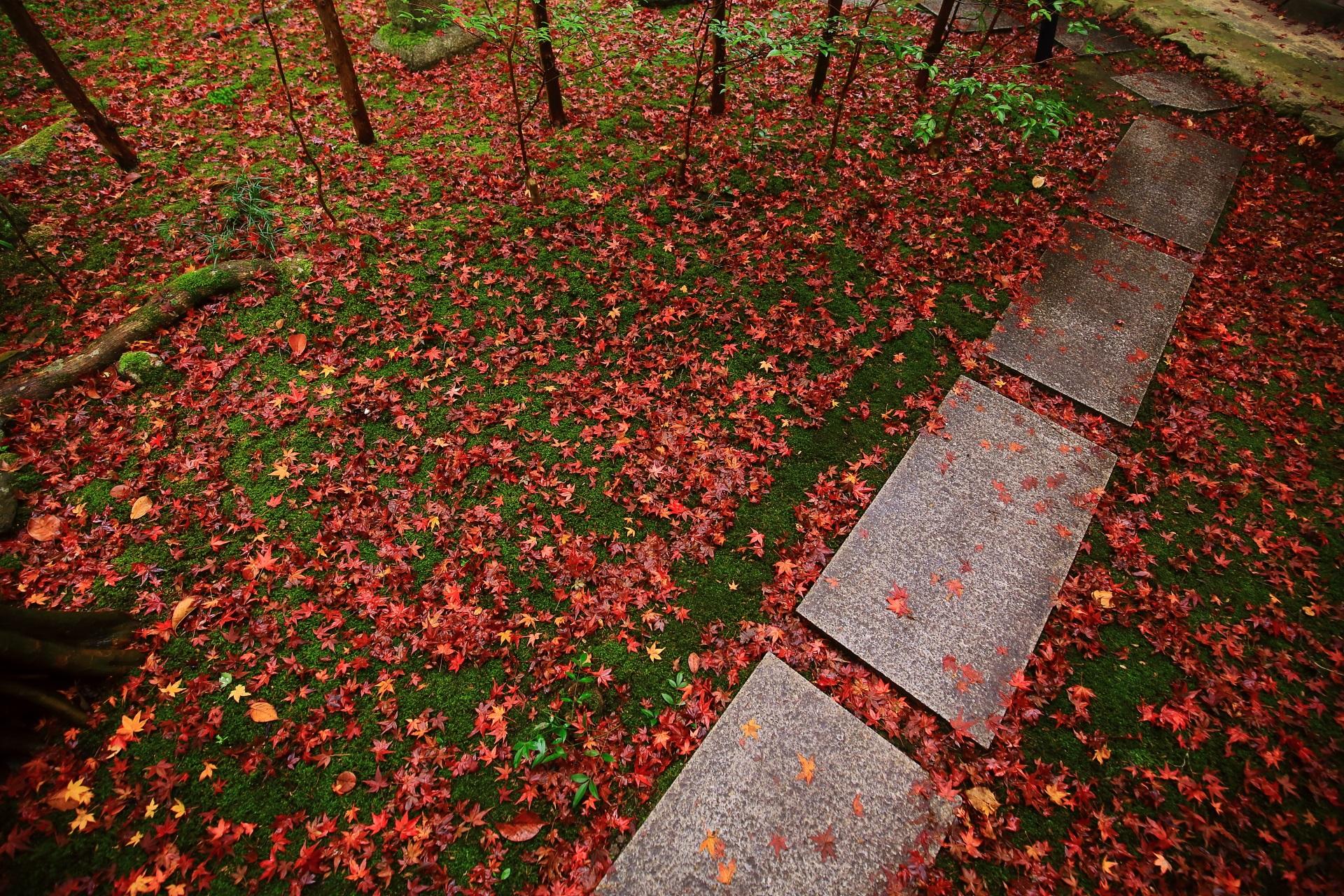 四角い飛び石の参道と苔を彩る散り紅葉