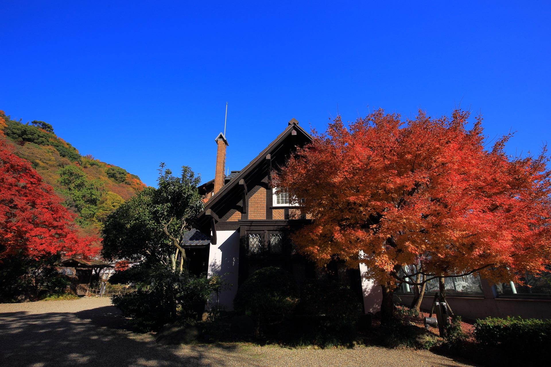 高画質 写真 大山崎山荘美術館 紅葉