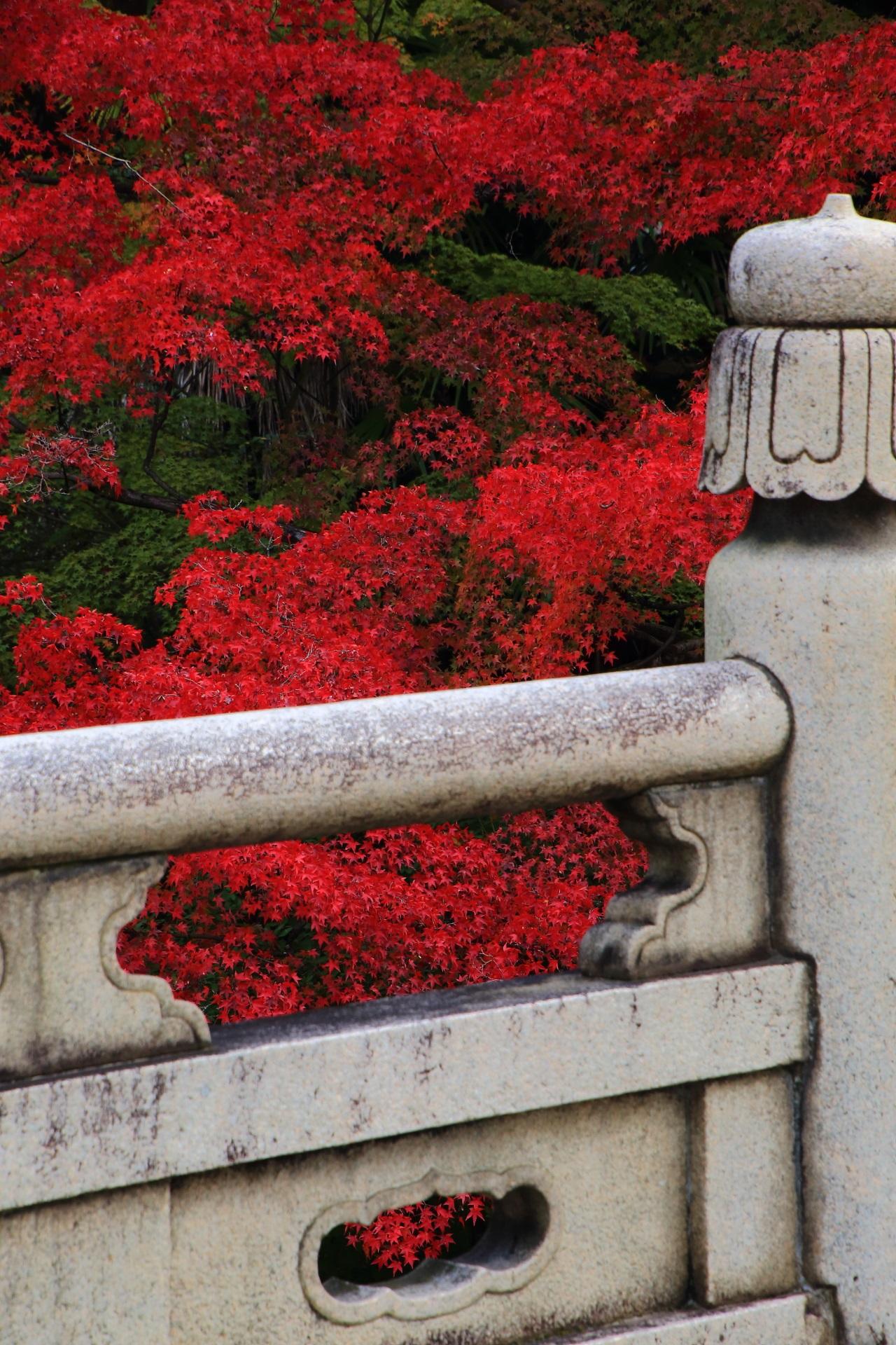 石橋と紅葉の絵になる秋の風景