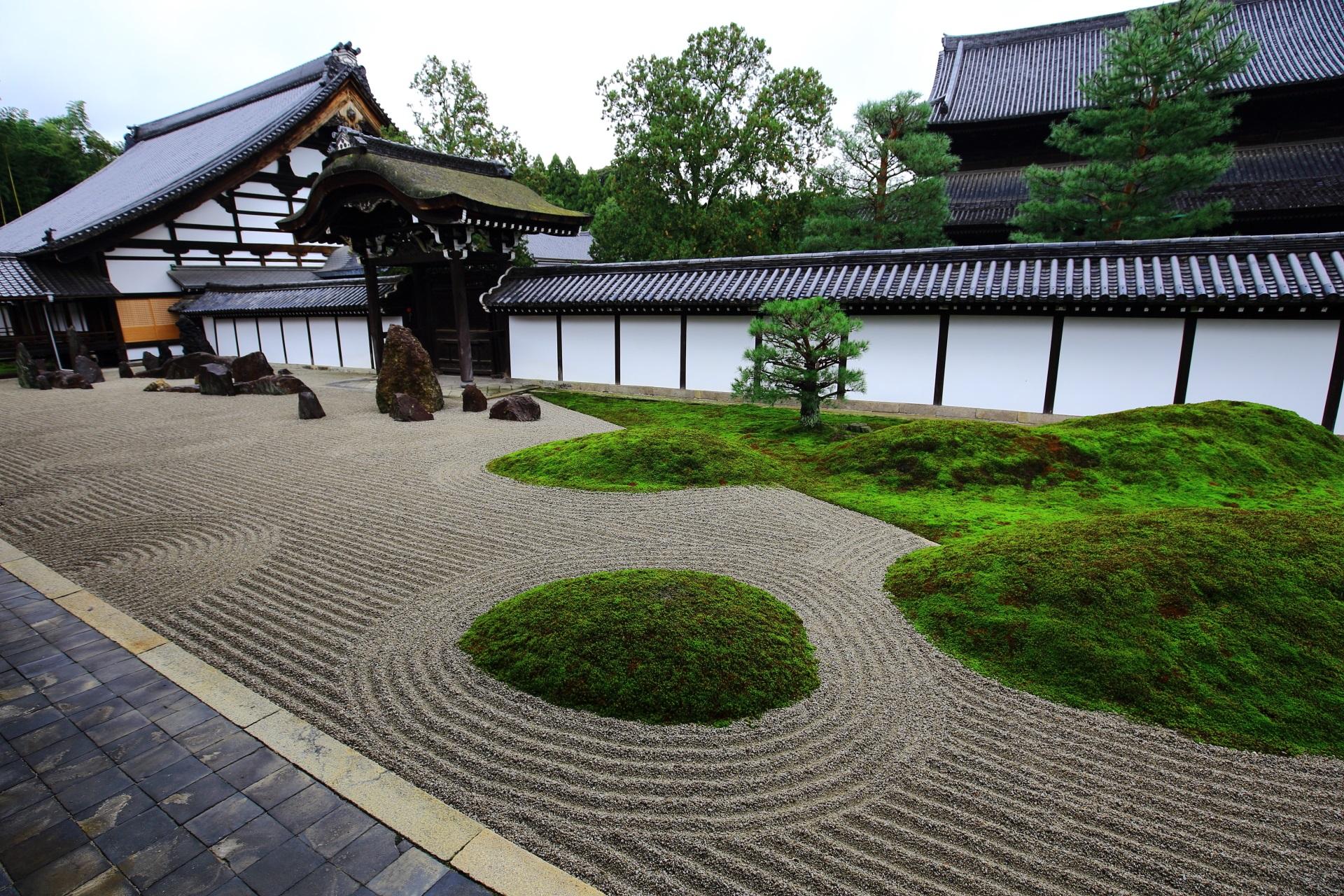 東福寺方丈庭園のの砂に浮かぶ美しい苔
