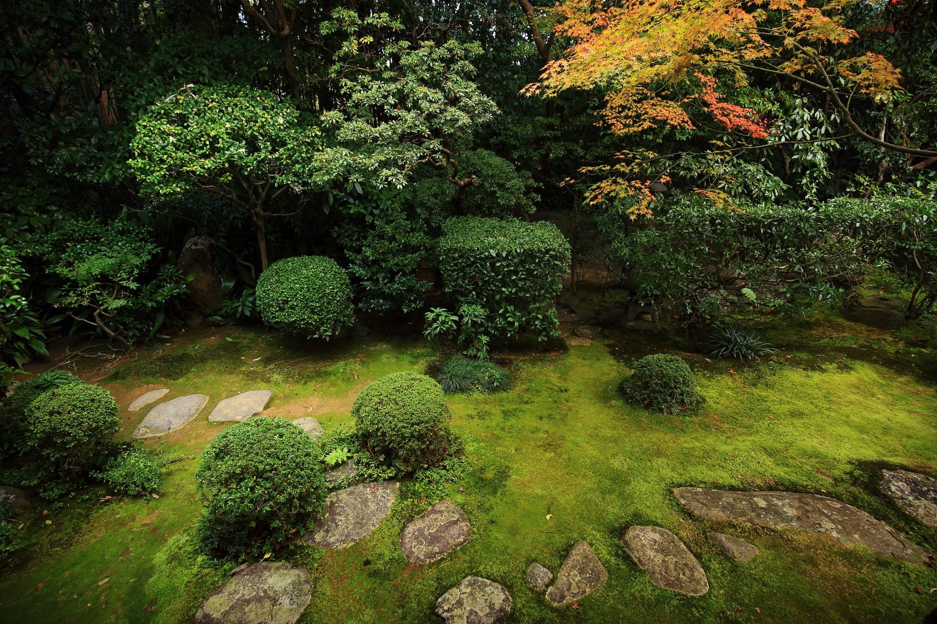 桂春院の情緒溢れる庭園と紅葉