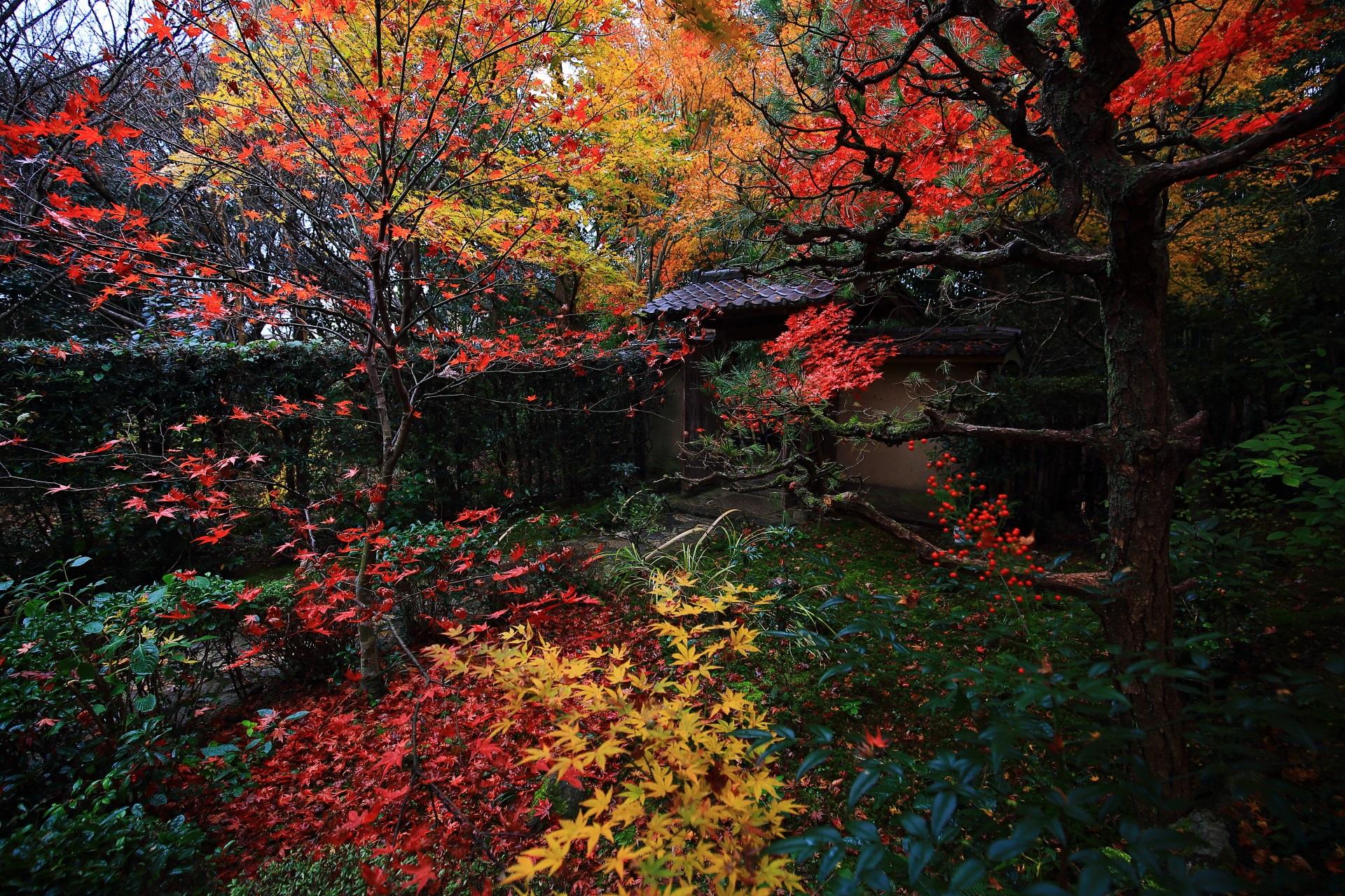 厭離庵の色とりどりの紅葉