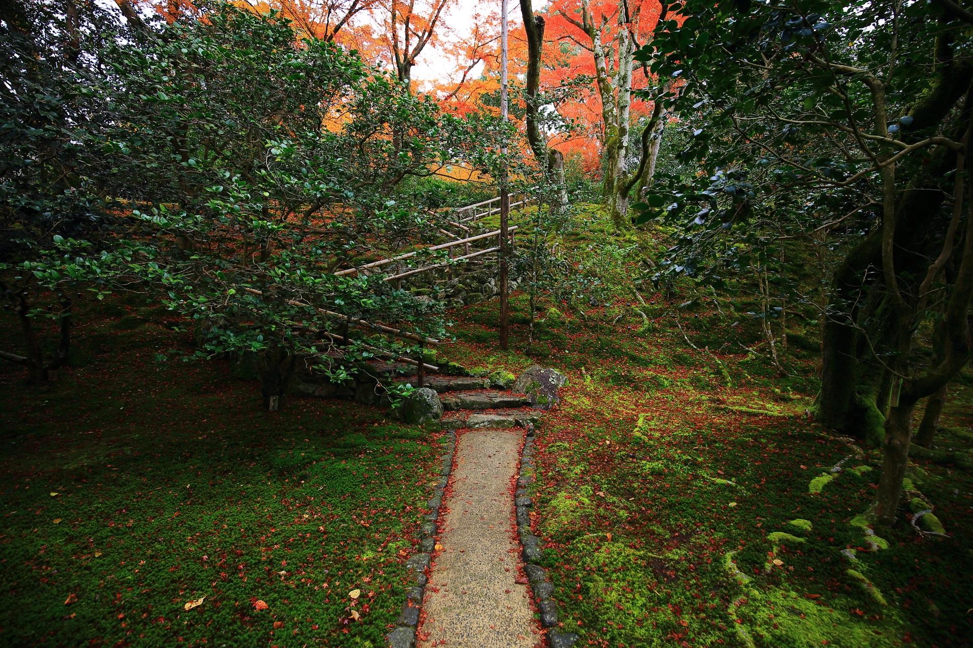 霊鑑寺の晩秋につつまれる築山の庭園