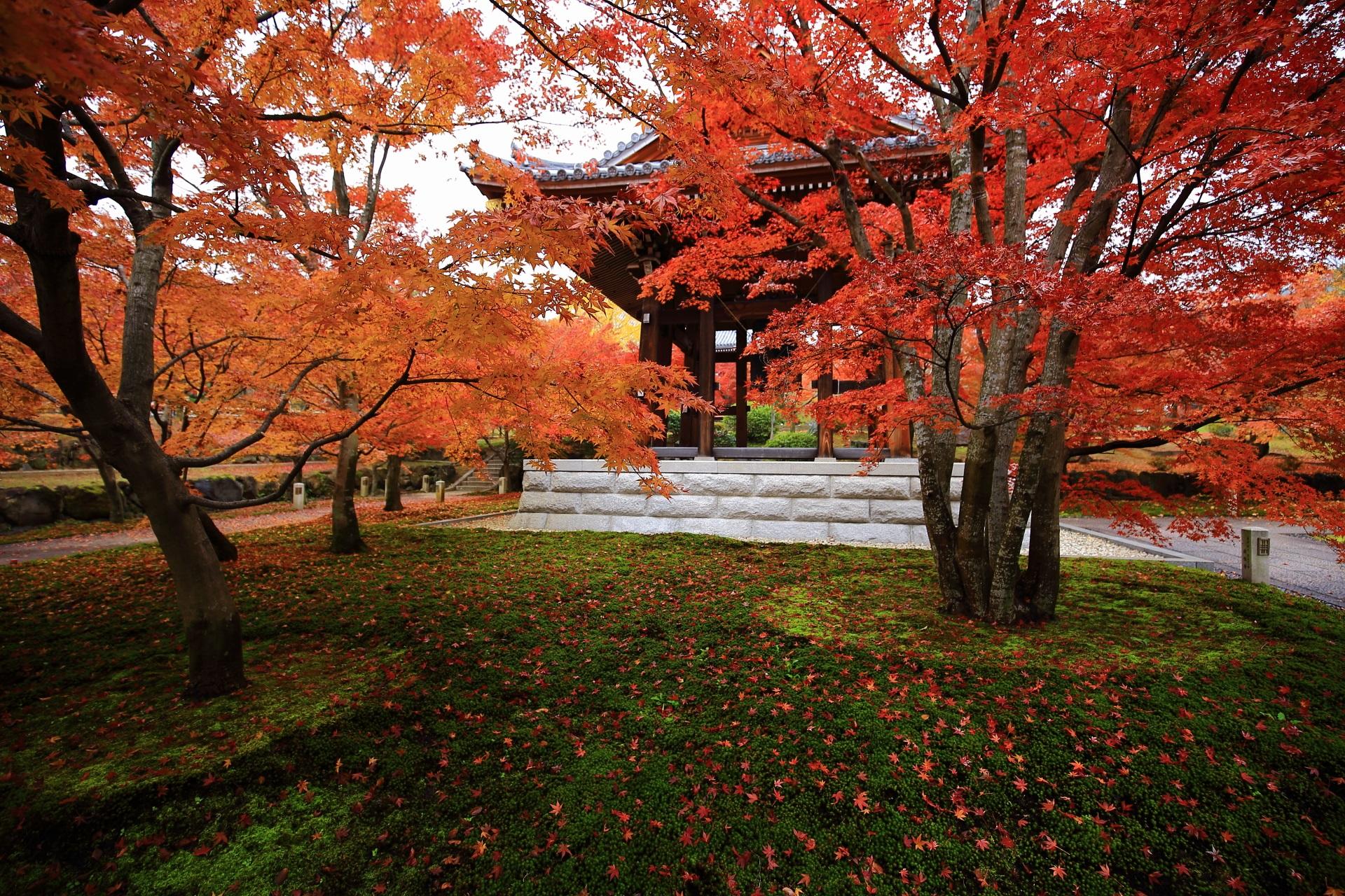 緑の苔と鐘楼を染める鮮やかな散りもみじと温かな紅葉