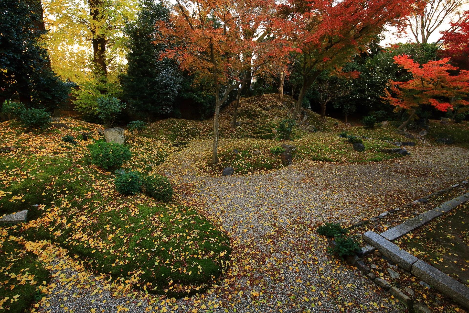 他ではあまり見られない独特の秋色に染まった立本寺の枯山水庭園