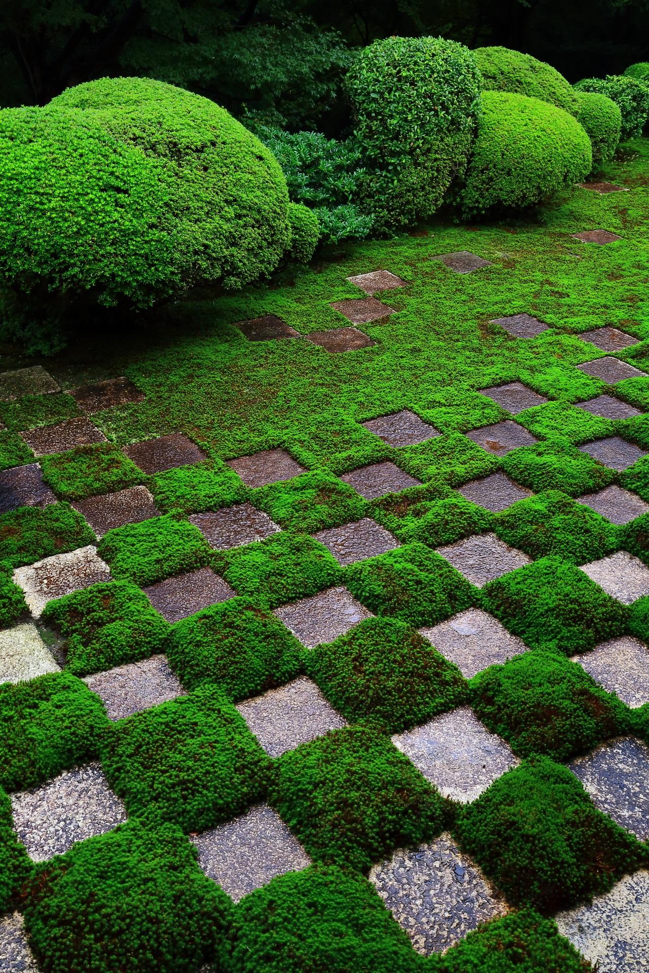 Moss garden of checkered pattern of Tofuku-ji Temple in Kyoto