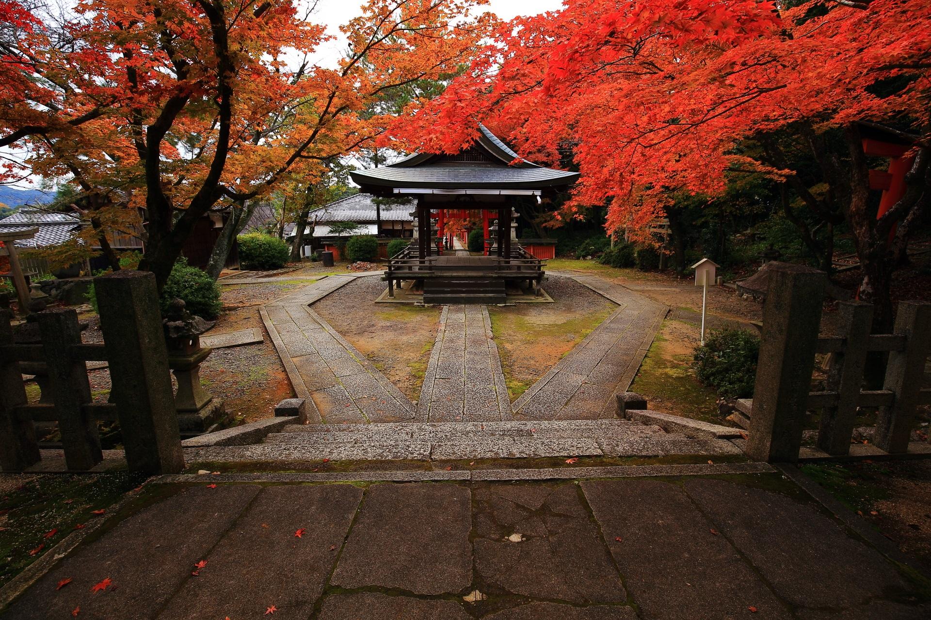 竹中稲荷神社の本殿前から眺めた拝殿と紅葉