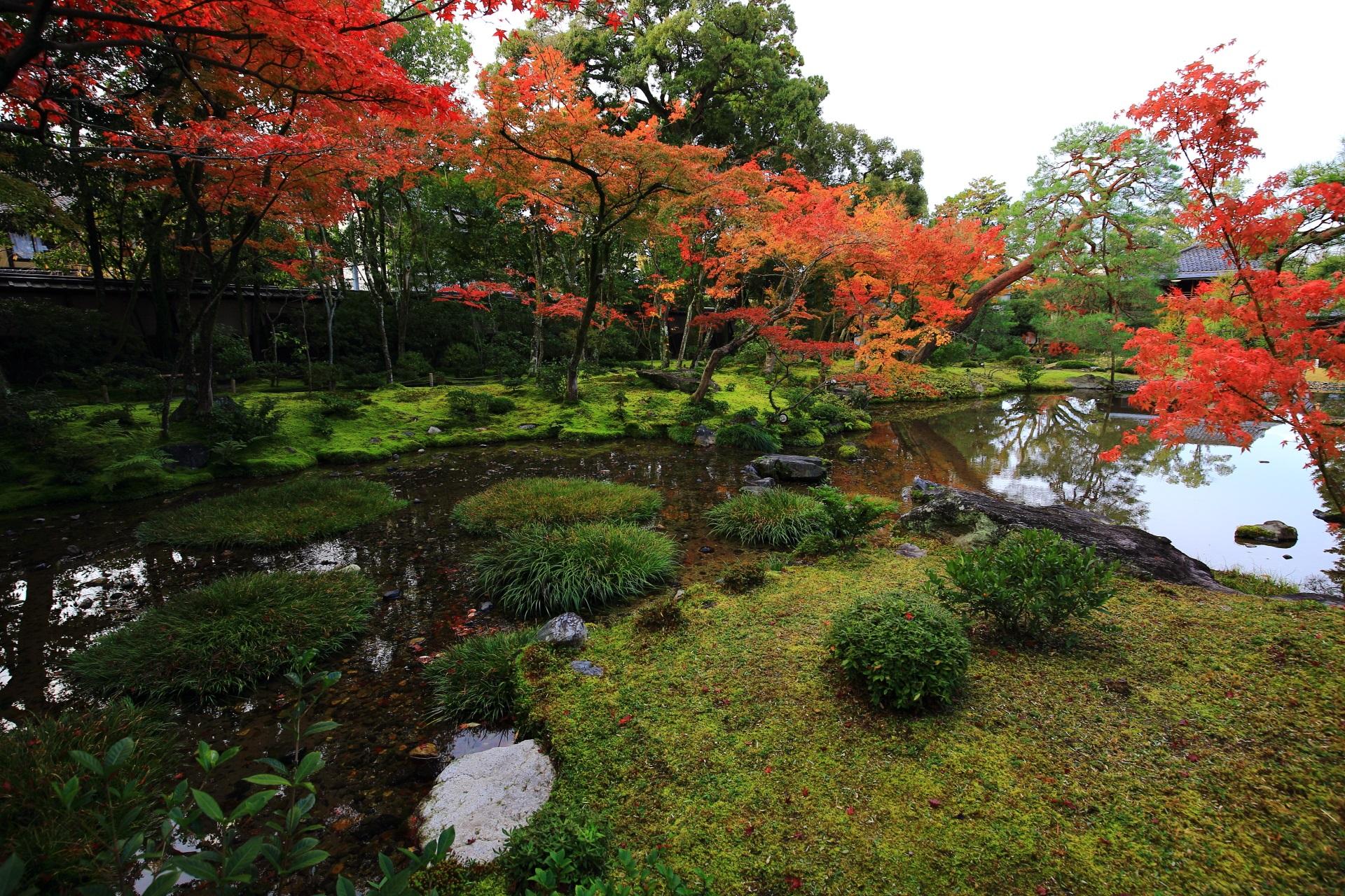 しっとりと落ち着いた雰囲気の庭園を紅葉が色濃く染める無鄰菴