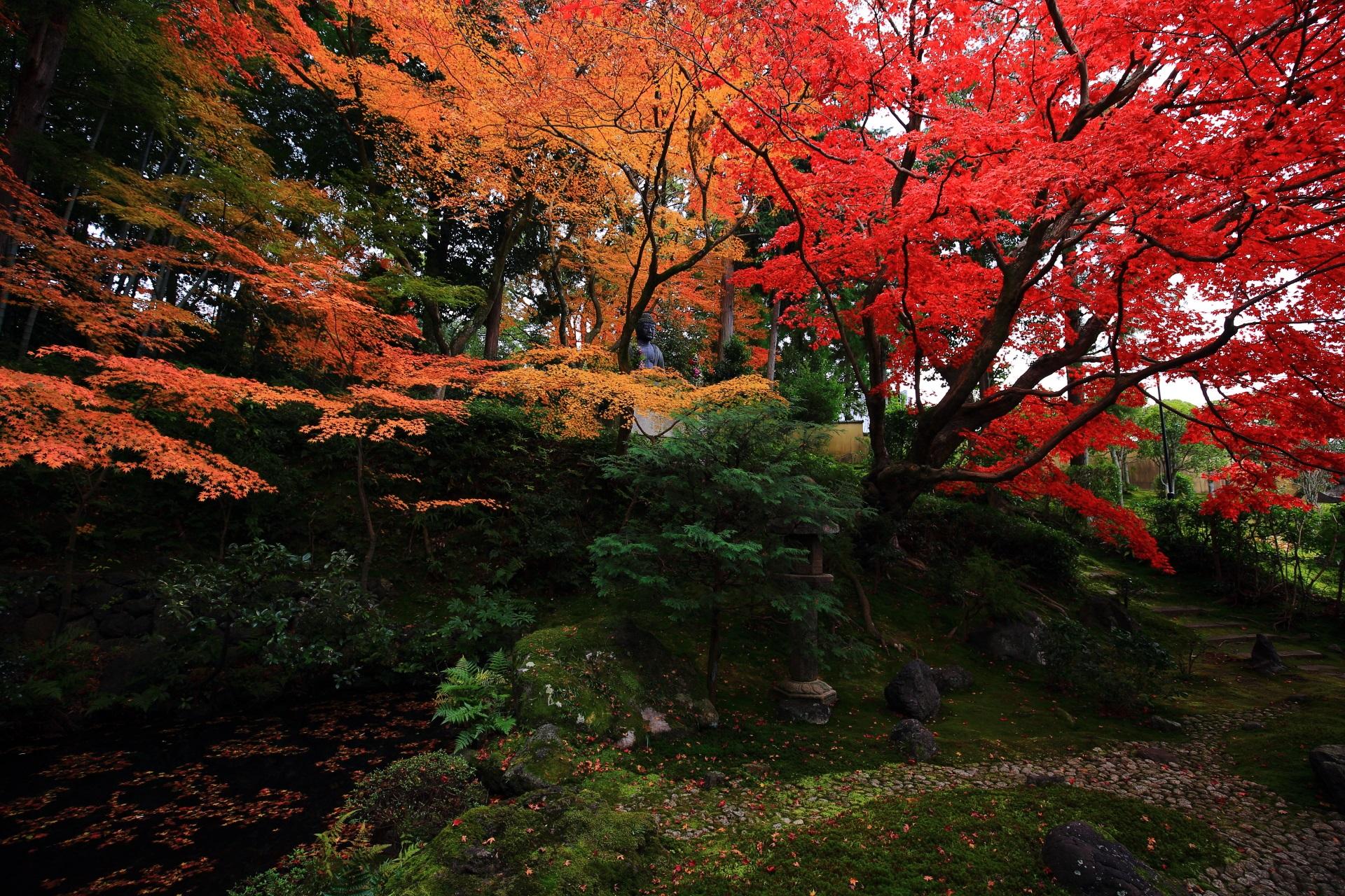栄摂院の素晴らしい紅葉と秋の情景
