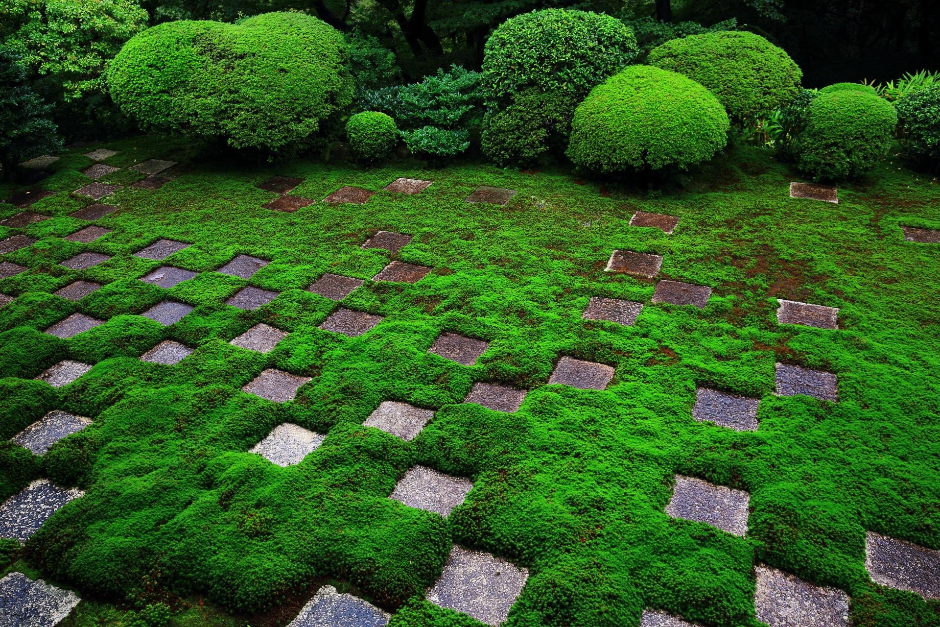 和モダンな東福寺の方丈北庭