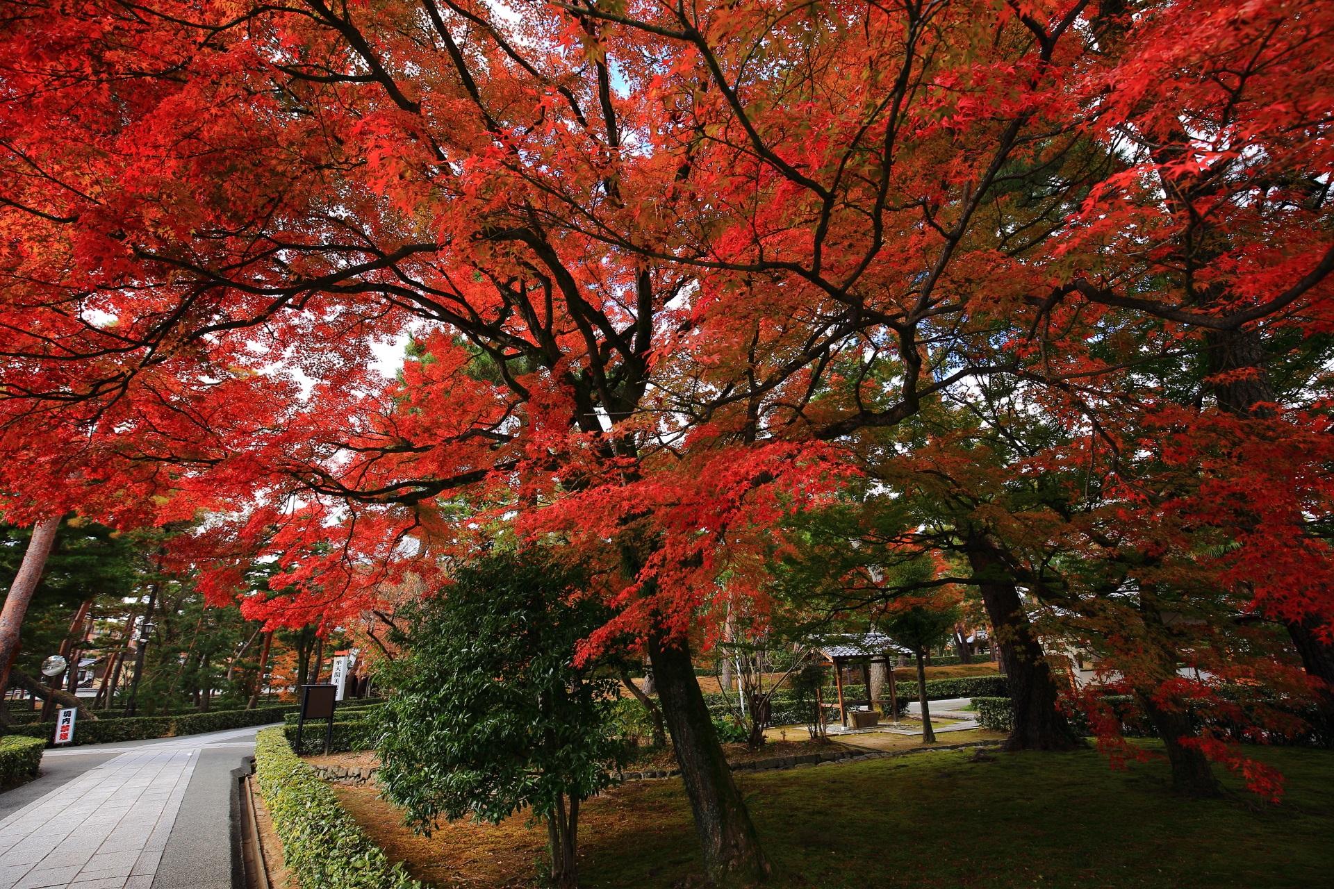 深い秋色につつまれる相国寺境内