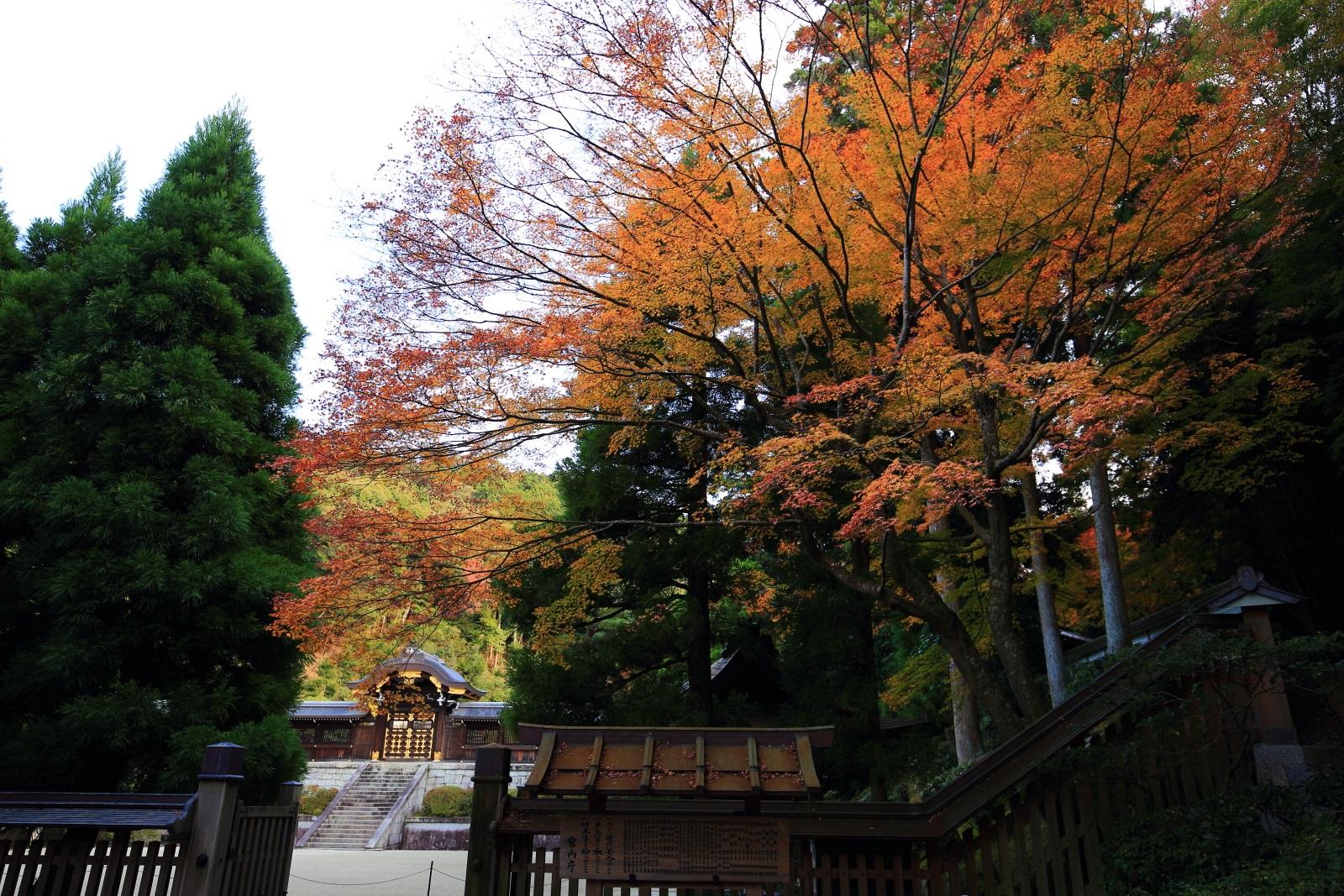 月輪陵(つきのわのみさぎ)入口と紅葉