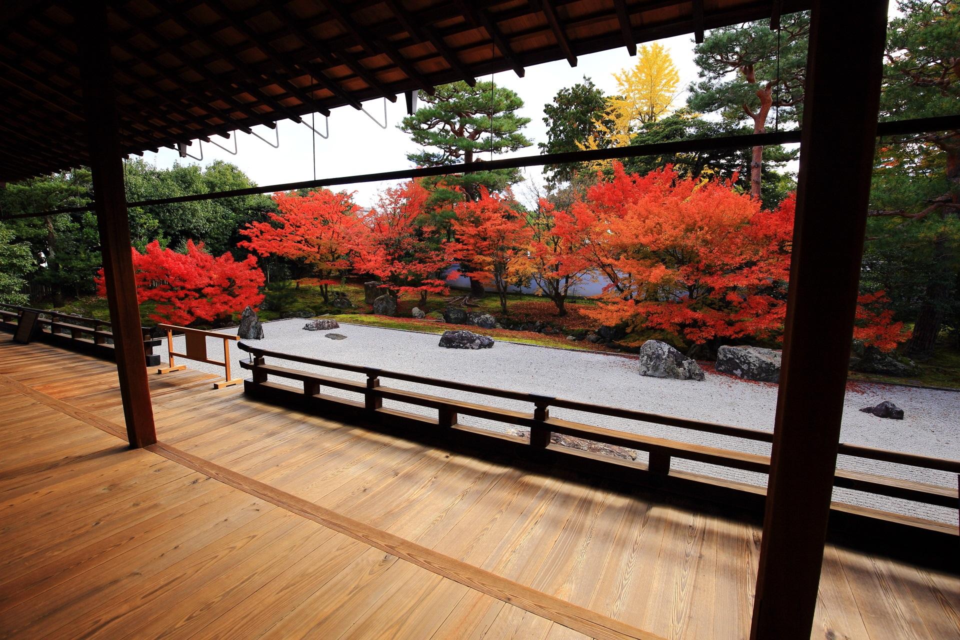 秋の特別拝観の紅葉の相国寺開山堂庭園