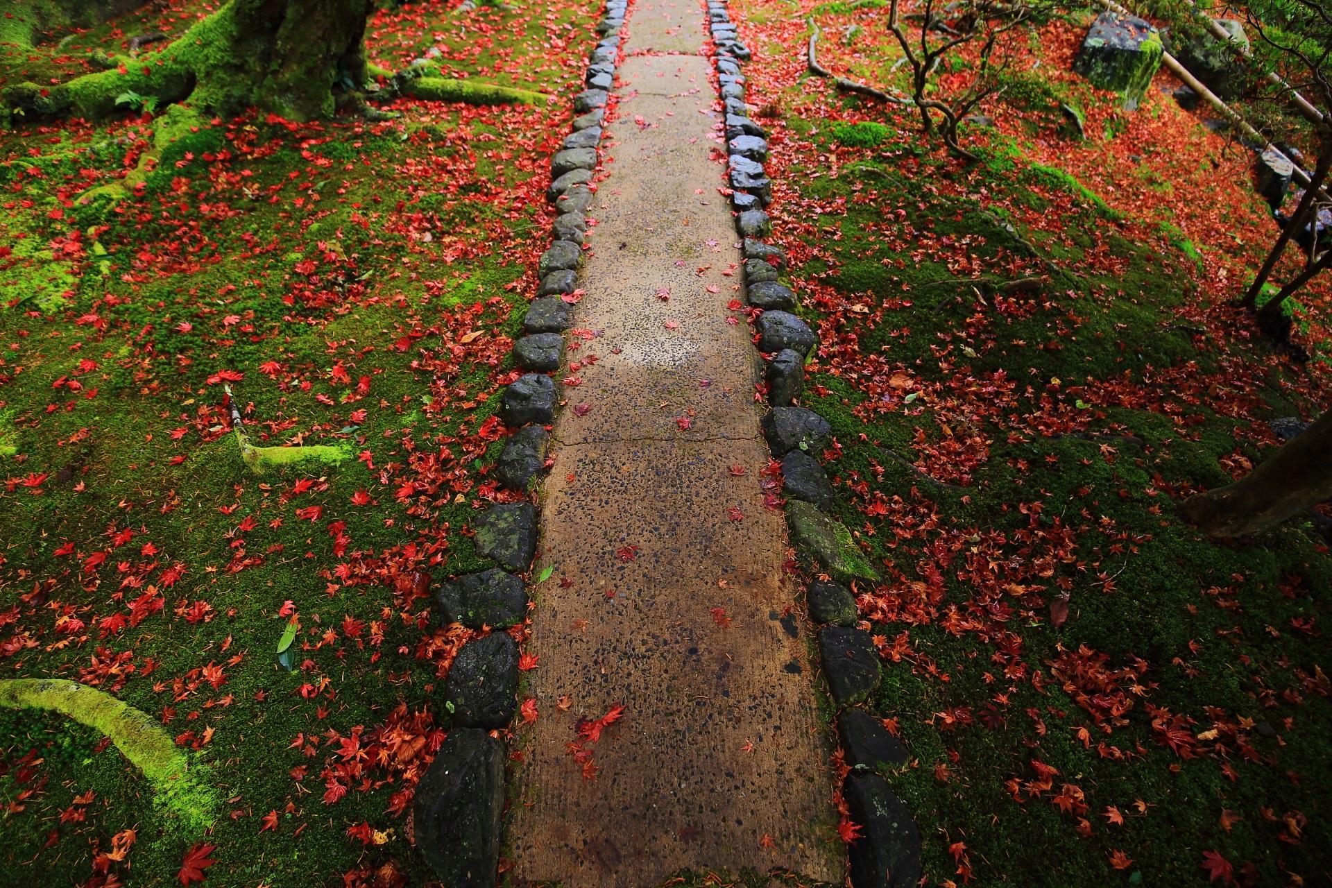 鮮やかな秋色に染まった風情ある参道と苔