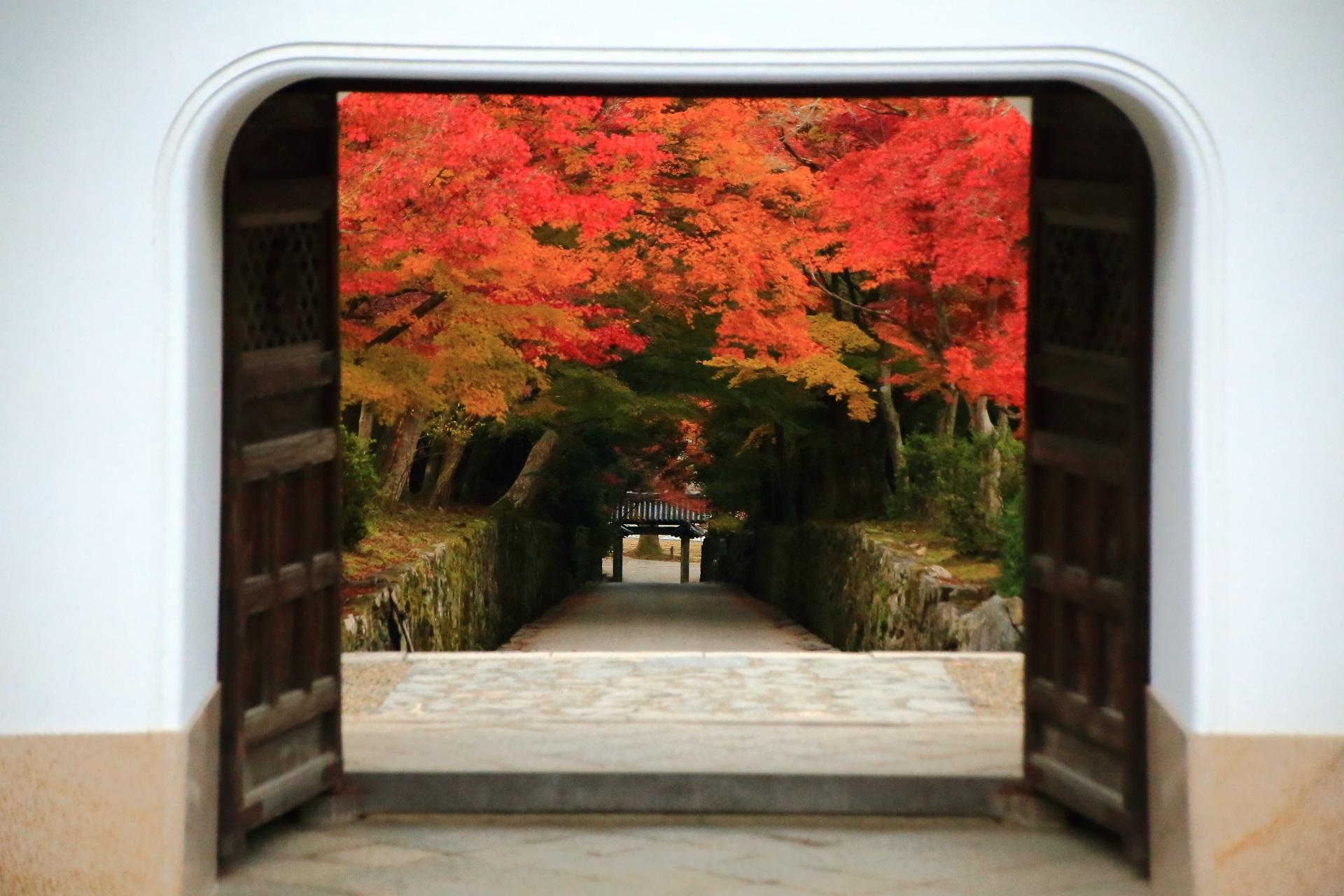 山門と石門の間の琴坂で華やぐ艶やかな紅葉