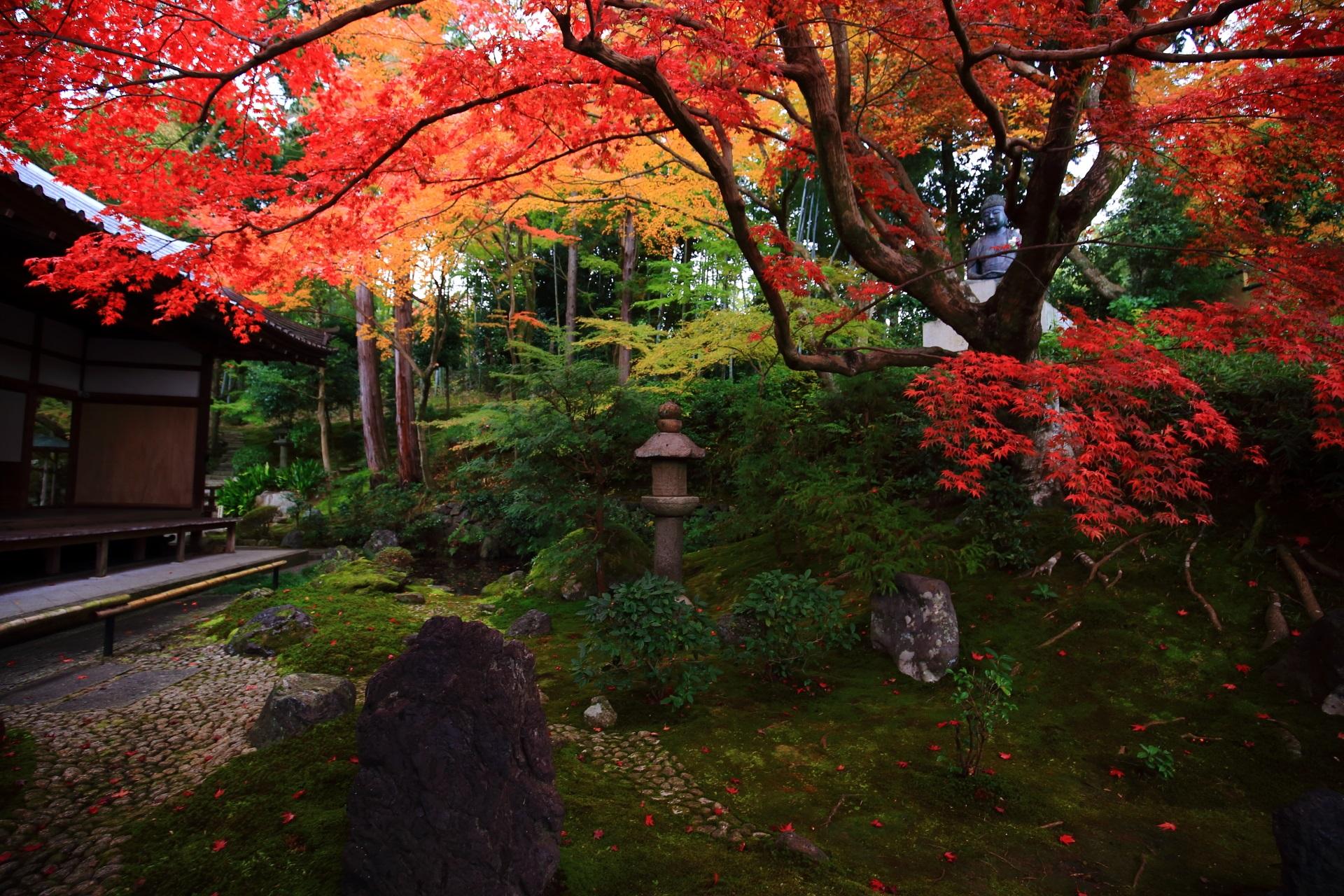 密度が濃く様々な見方のできる彩りの庭園