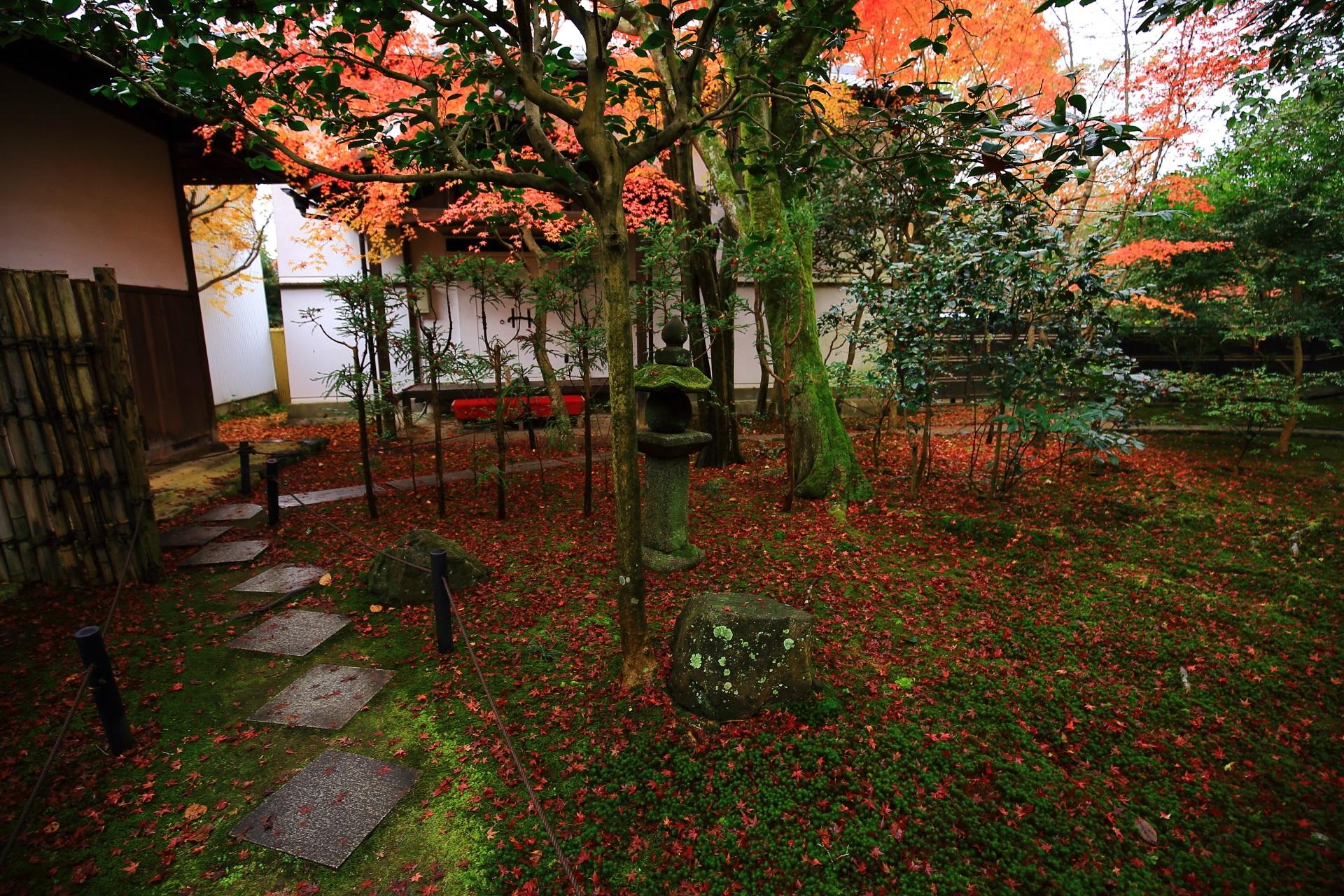 霊鑑寺の境内西側の土蔵付近の紅葉や散りもみじ