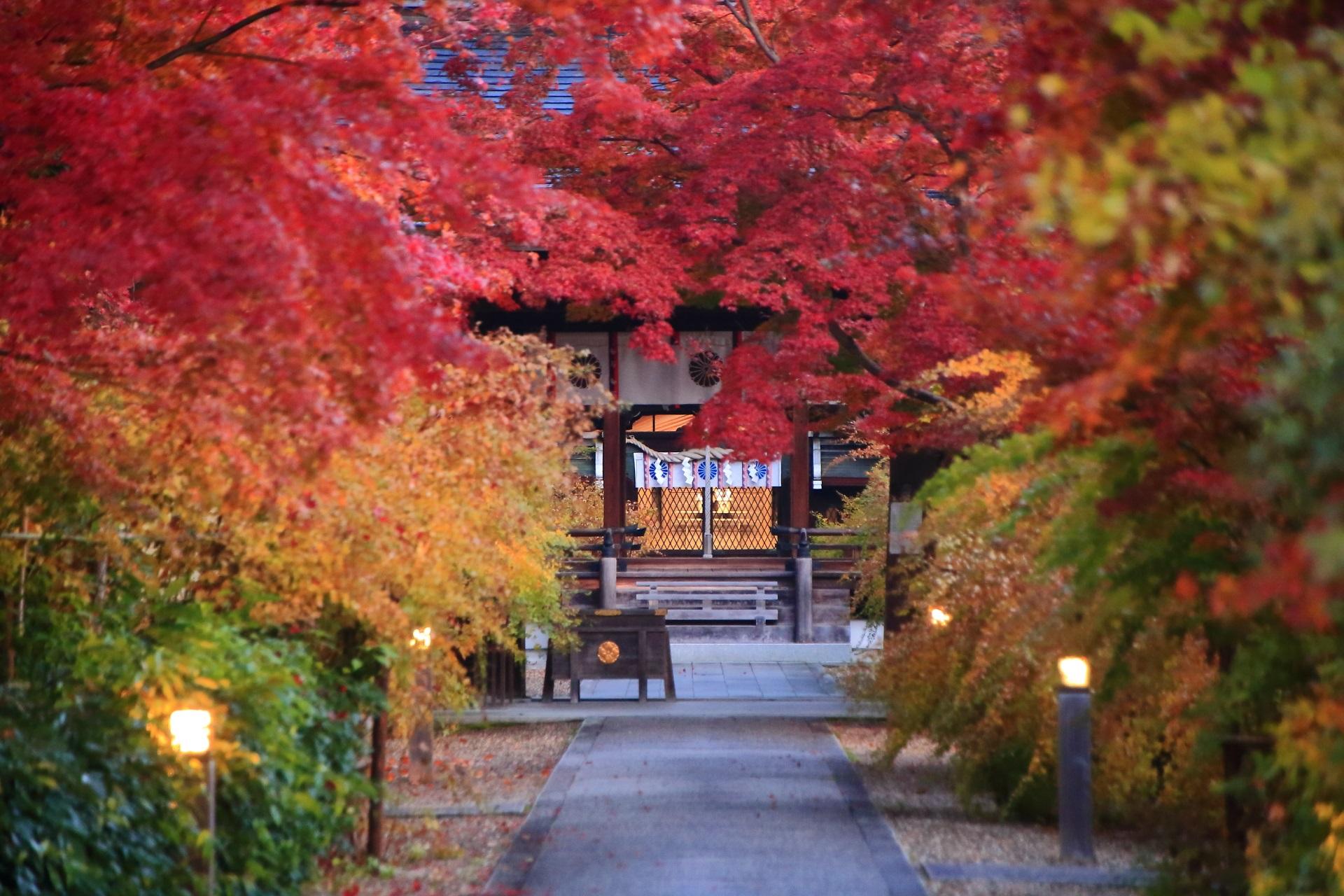 明かりの灯った梨木神社の紅葉につつまれた本殿