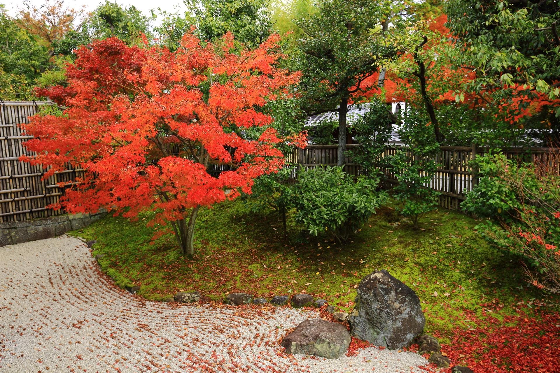 開山堂庭園の東側の緑の苔と白砂を彩る綺麗な紅葉