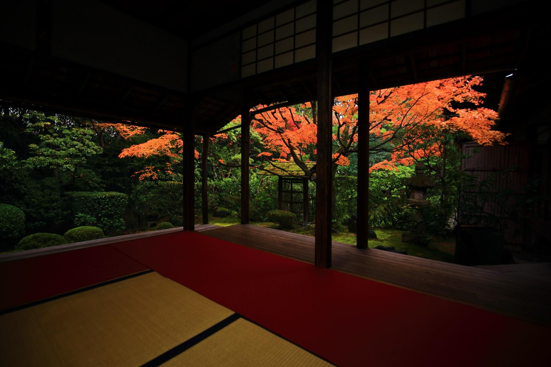 桂春院の風情ある紅葉と秋色の庭園や情景