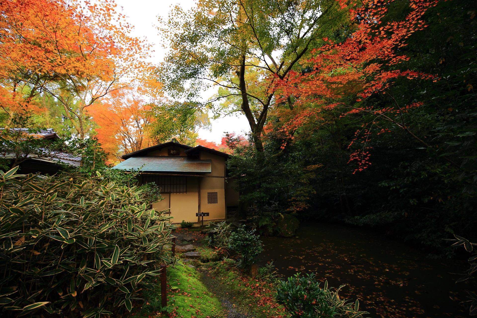 来迎院の紅葉に染まるお茶室の含翆軒と心字池