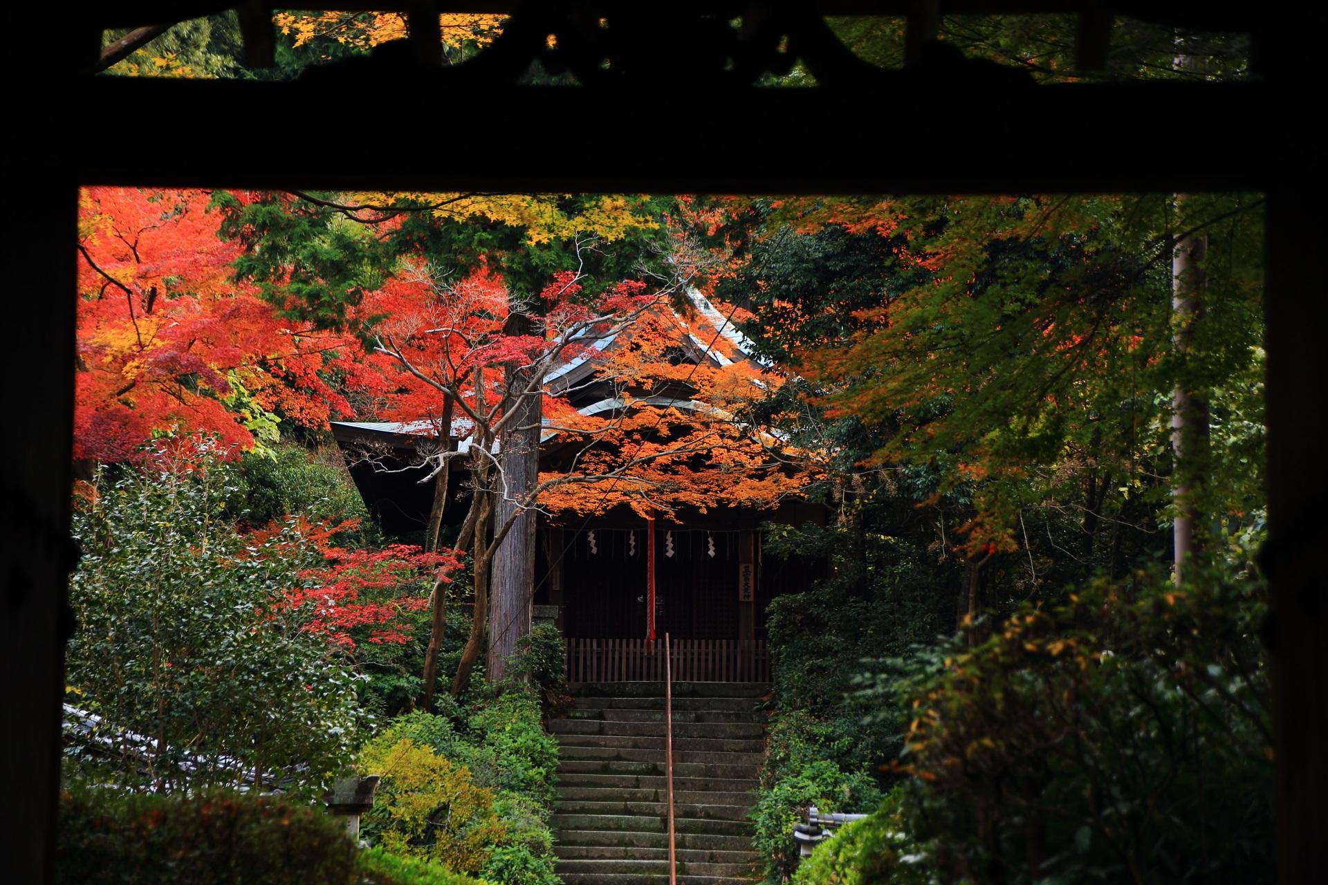 山門の下から眺めた鮮やかな紅葉に彩られる来迎院の石段と荒神堂