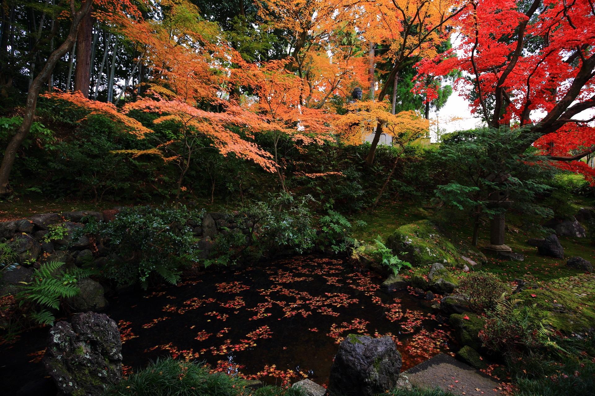 オレンジ色の紅葉がより濃く色づいた池泉式庭園