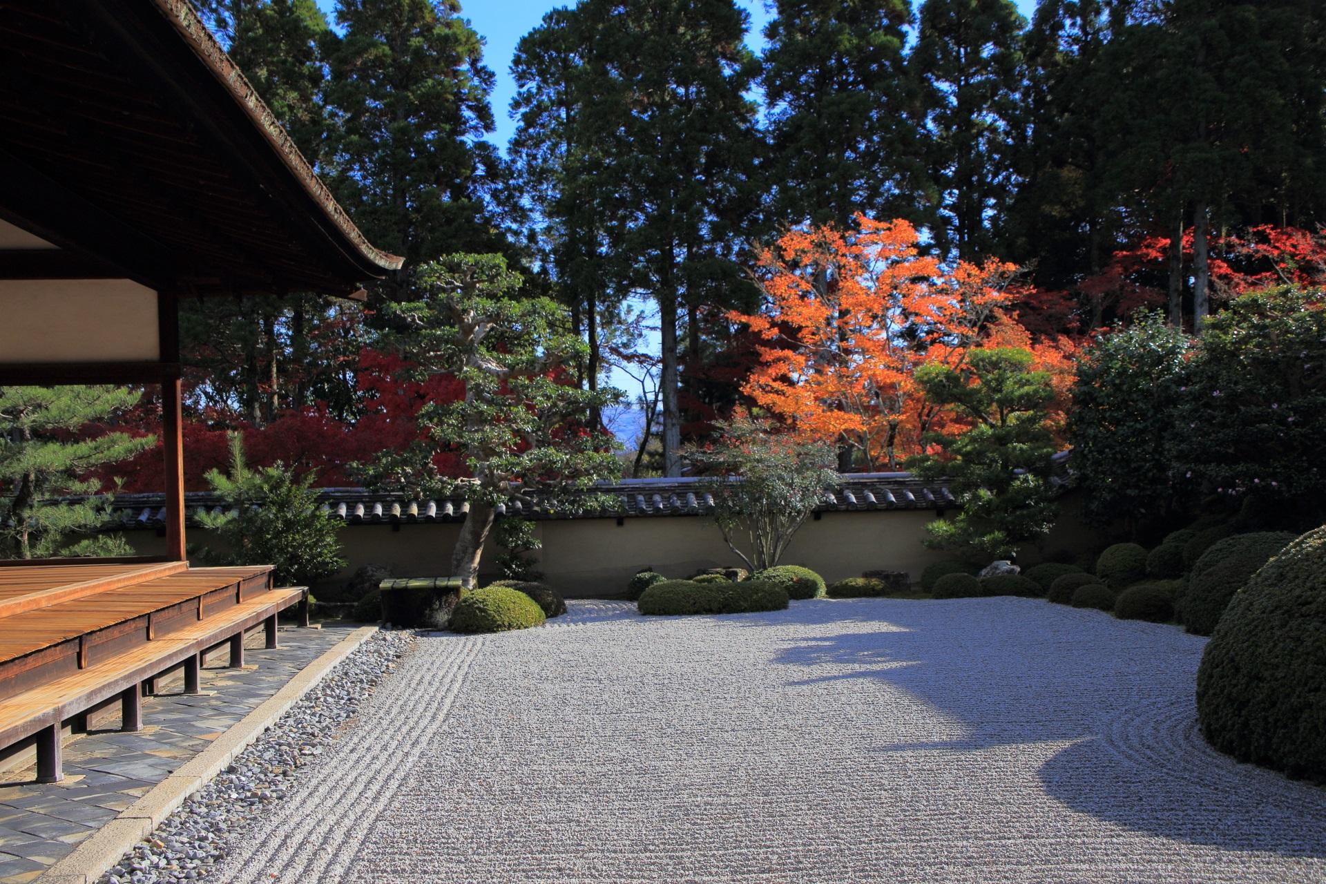 方丈庭園南庭の紅葉