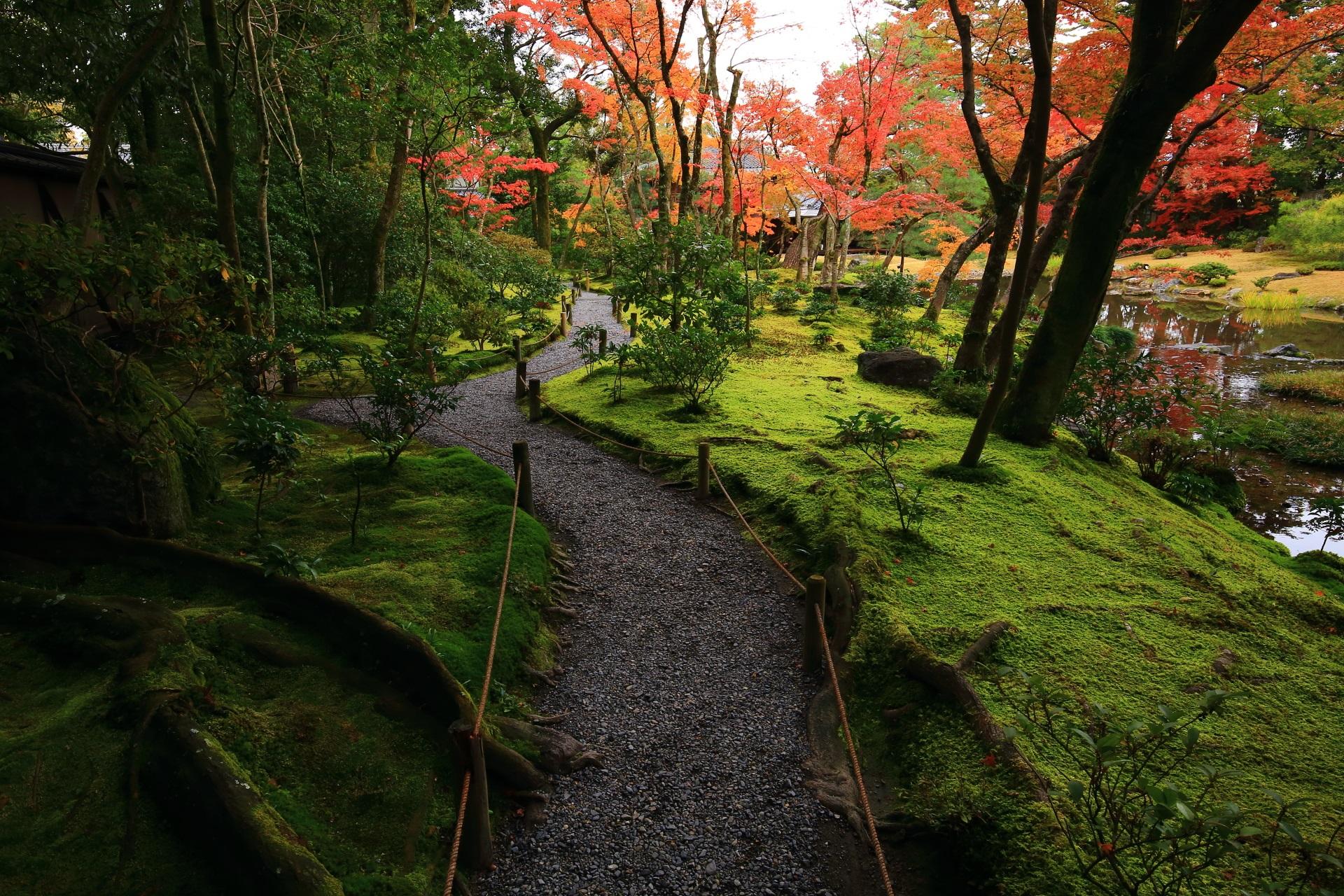 奥から眺めた無鄰菴の情緒溢れる庭園の紅葉と苔
