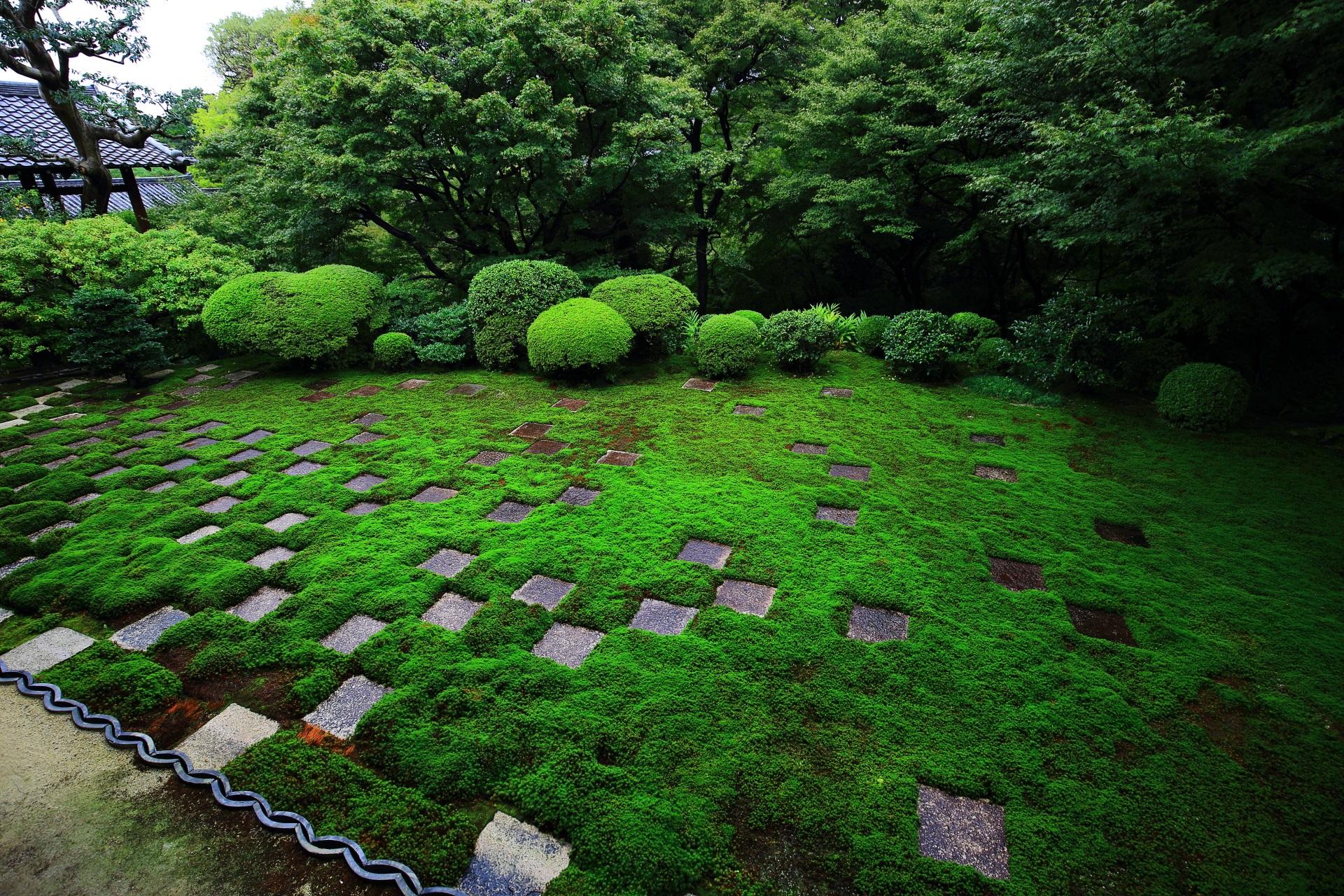 緑の苔とサツキの美しい方丈北庭
