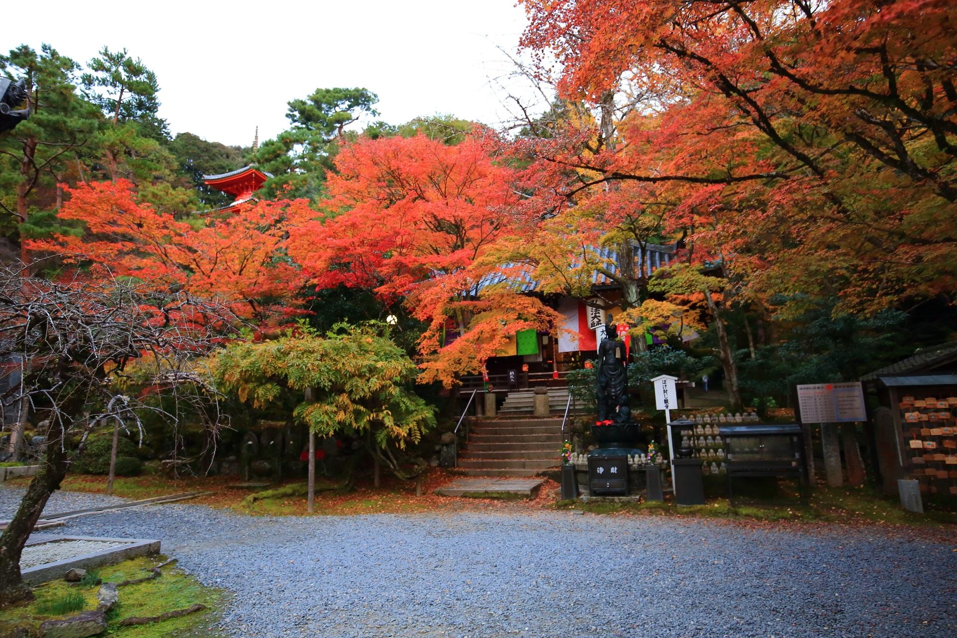 大師堂と多宝塔の鮮やかに染まる紅葉