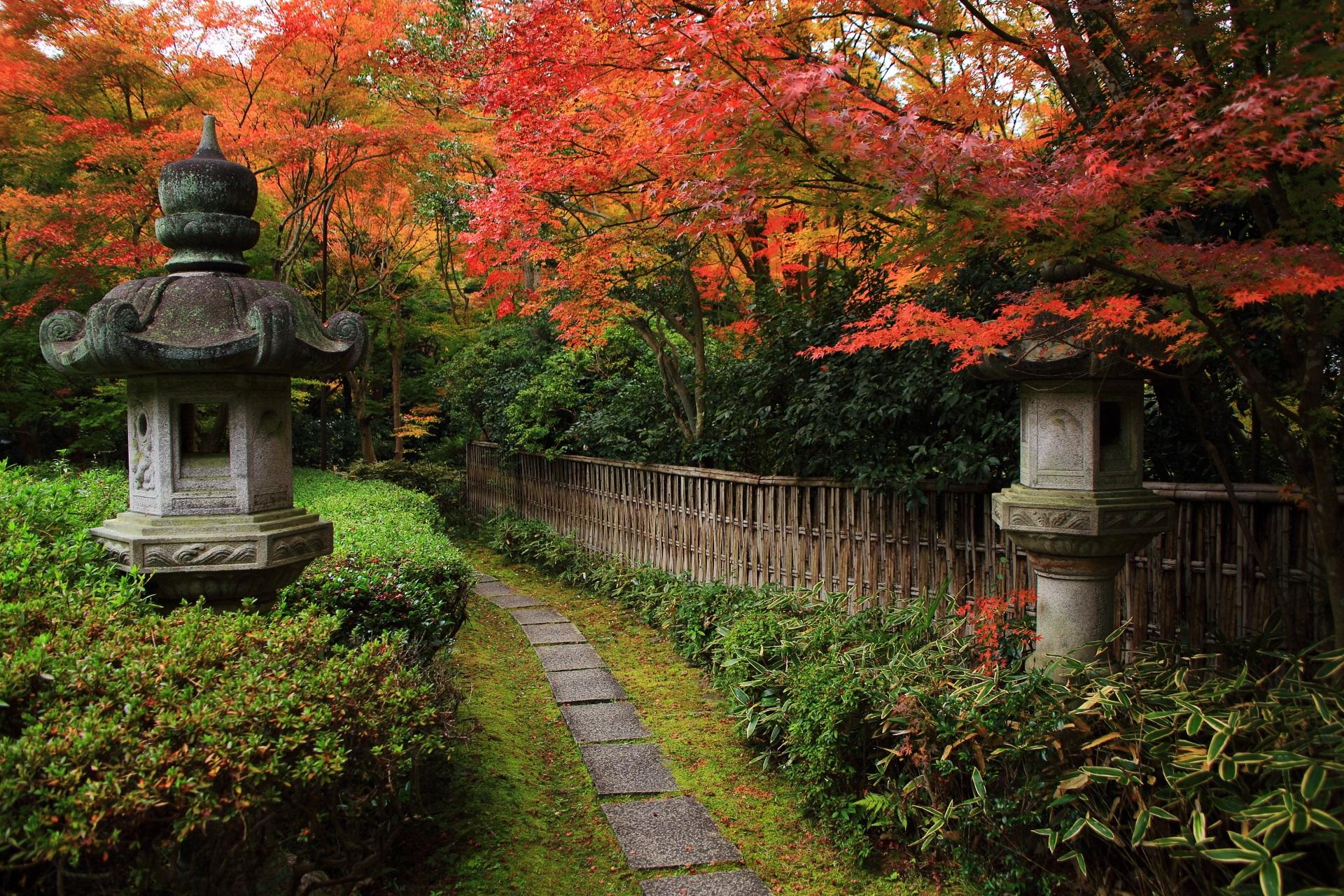 来迎院の秋色に染まった風情ある石の参道と竹垣