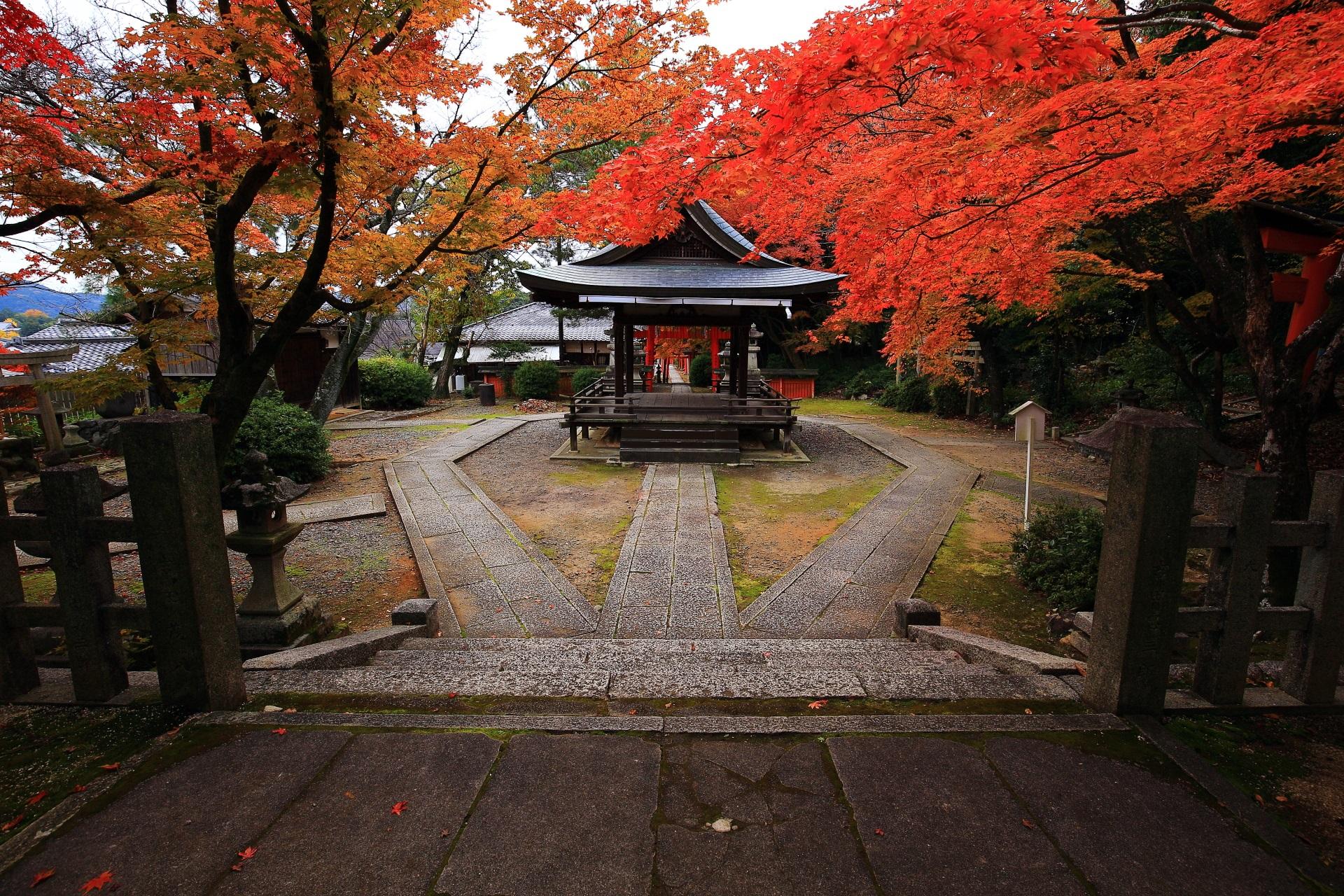 高画質 写真 竹中稲荷神社 紅葉