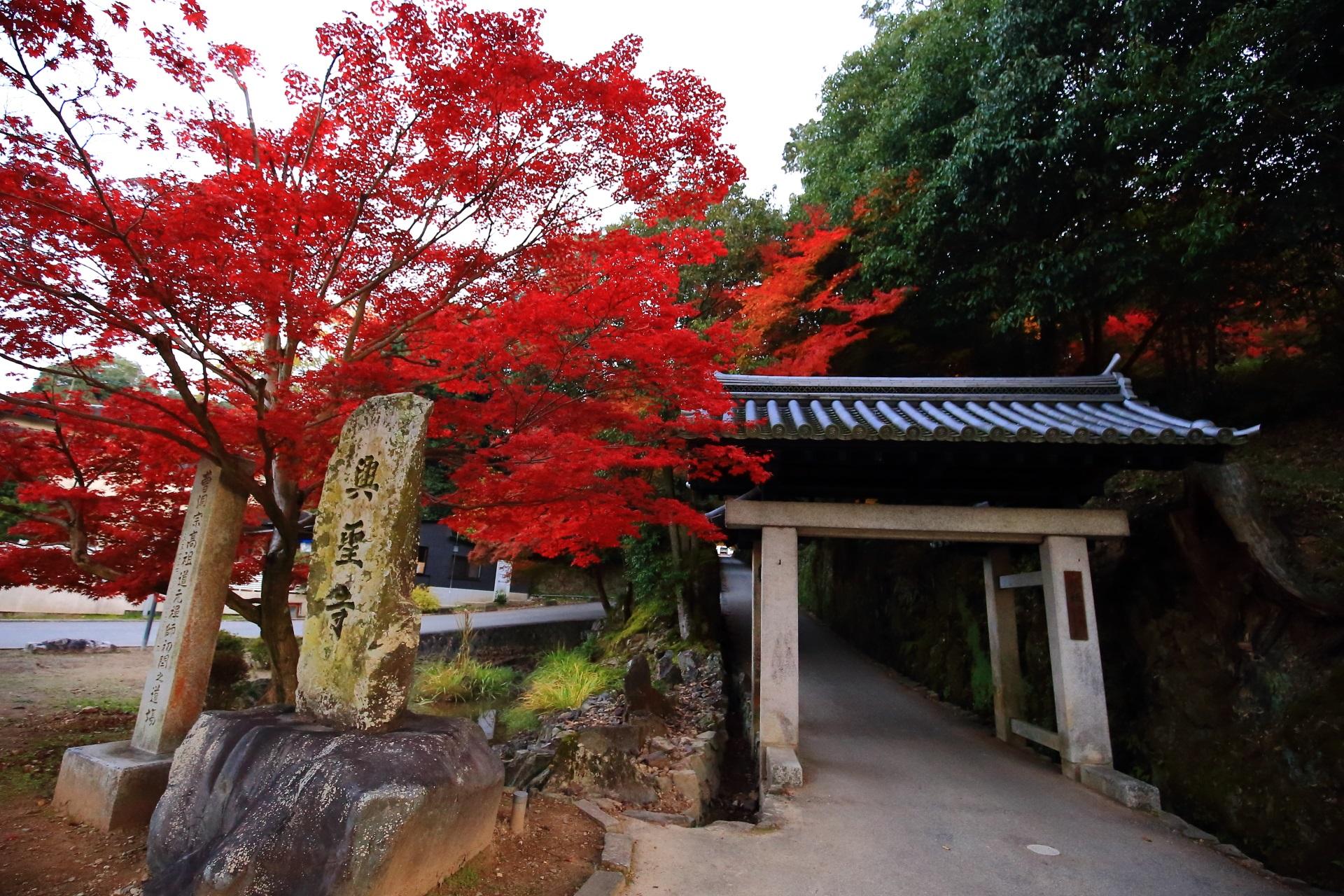興聖寺の石門と真っ赤な紅葉