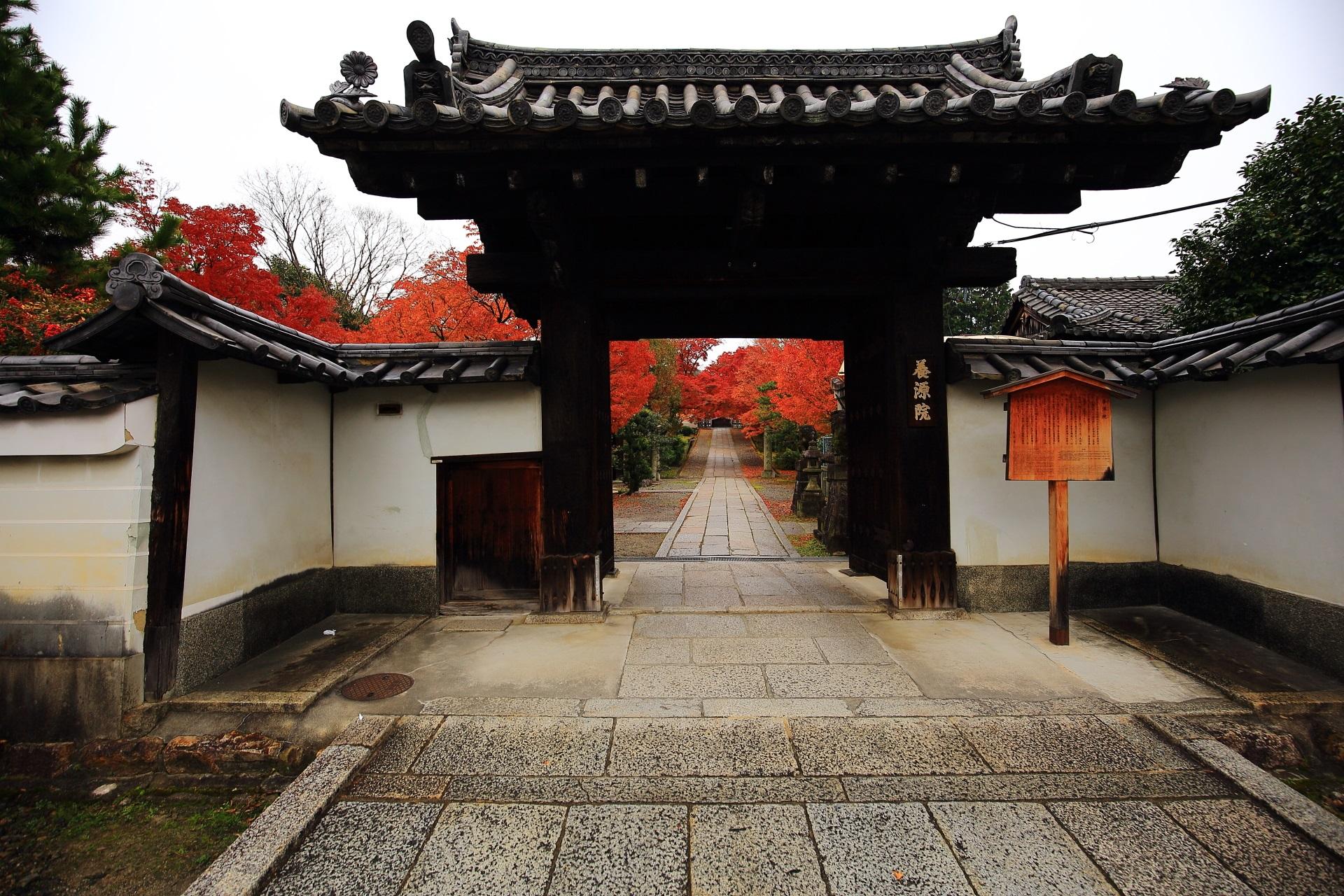 養源院の山門と奥に見える参道の紅葉
