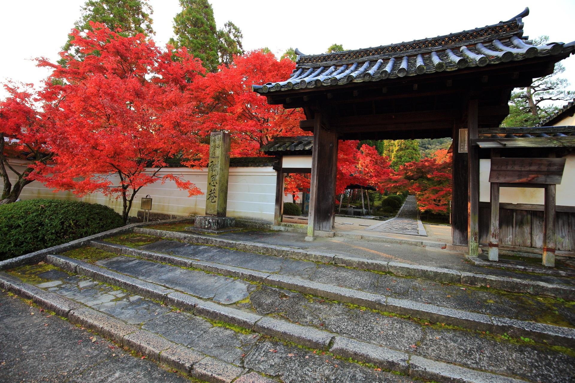 絵になる紅葉の参道と総門