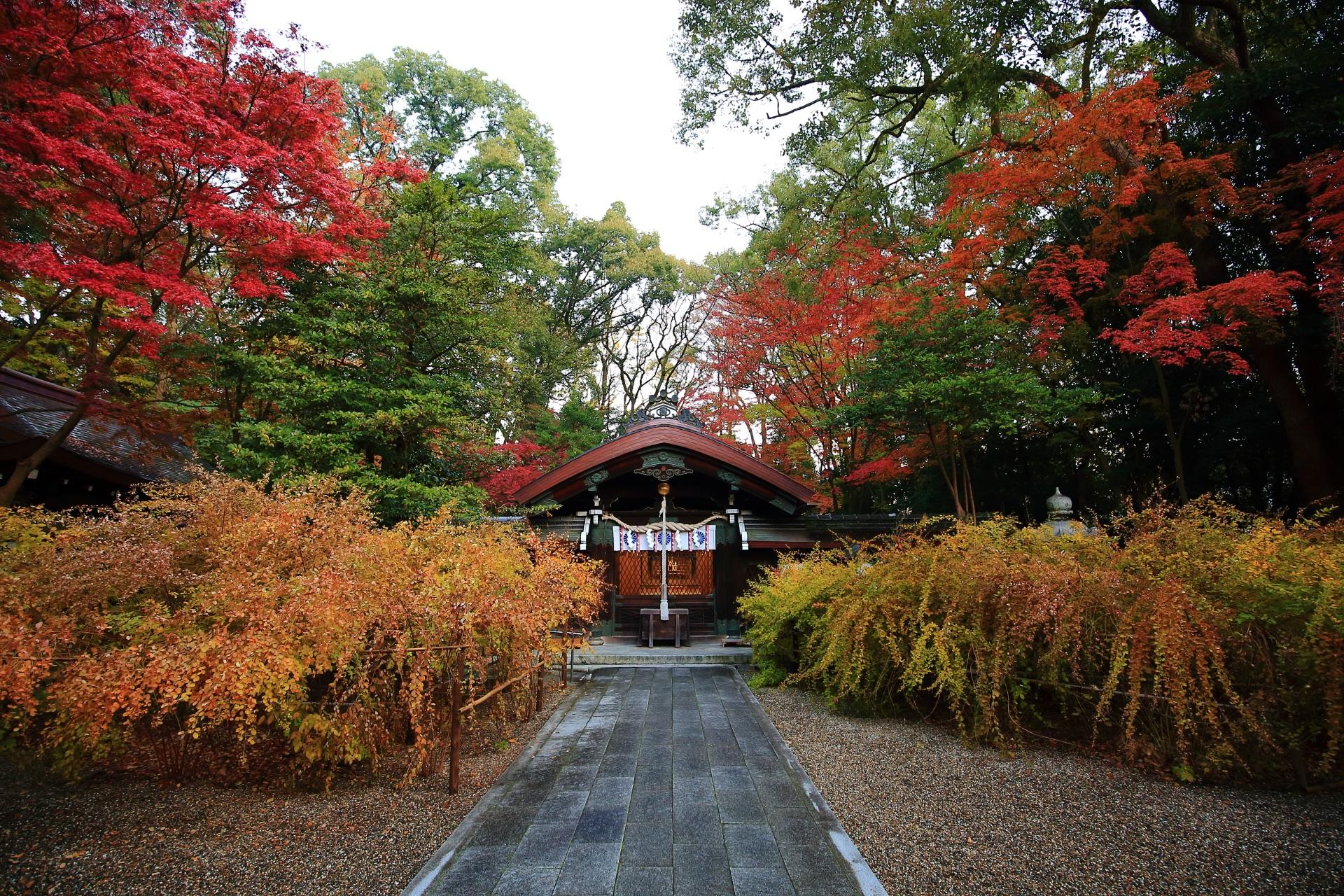 梨木神社の本殿付近の紅葉と萩