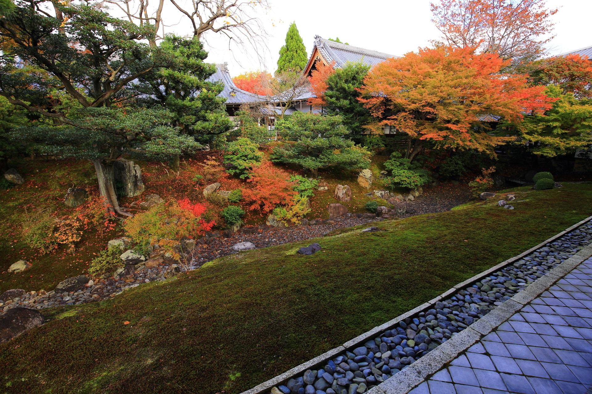 色づき中の裏方丈庭園の紅葉