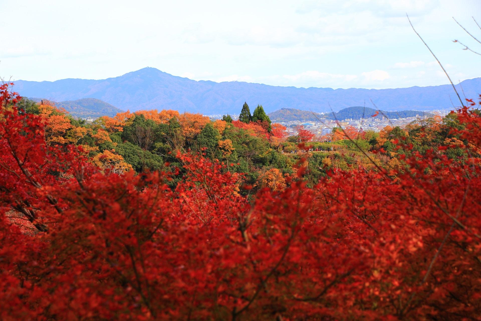 大悲閣千光寺の紅葉の向こうに見える秋色に色づいた山々と京都市街