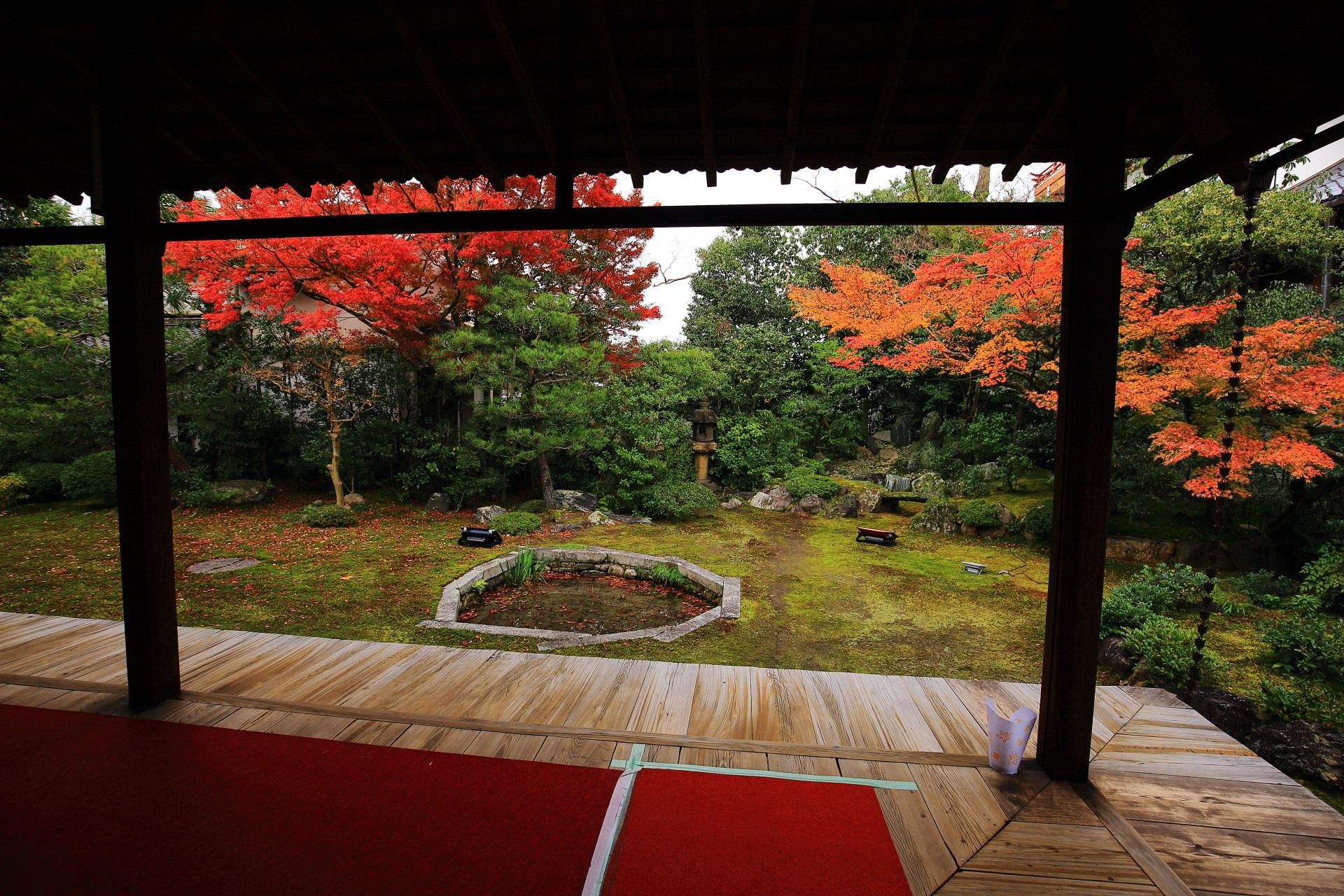 見ごろをむかえる紅葉の巴の庭
