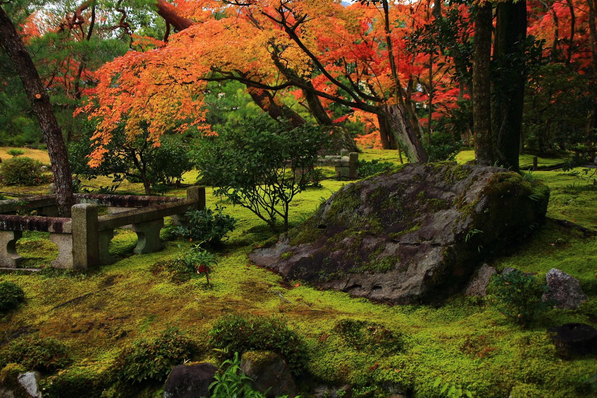風情の中にも華やかさが感じられる秋の無鄰菴