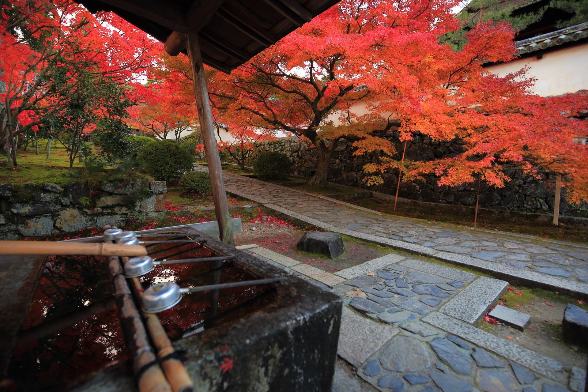 風情ある秋色の一休寺