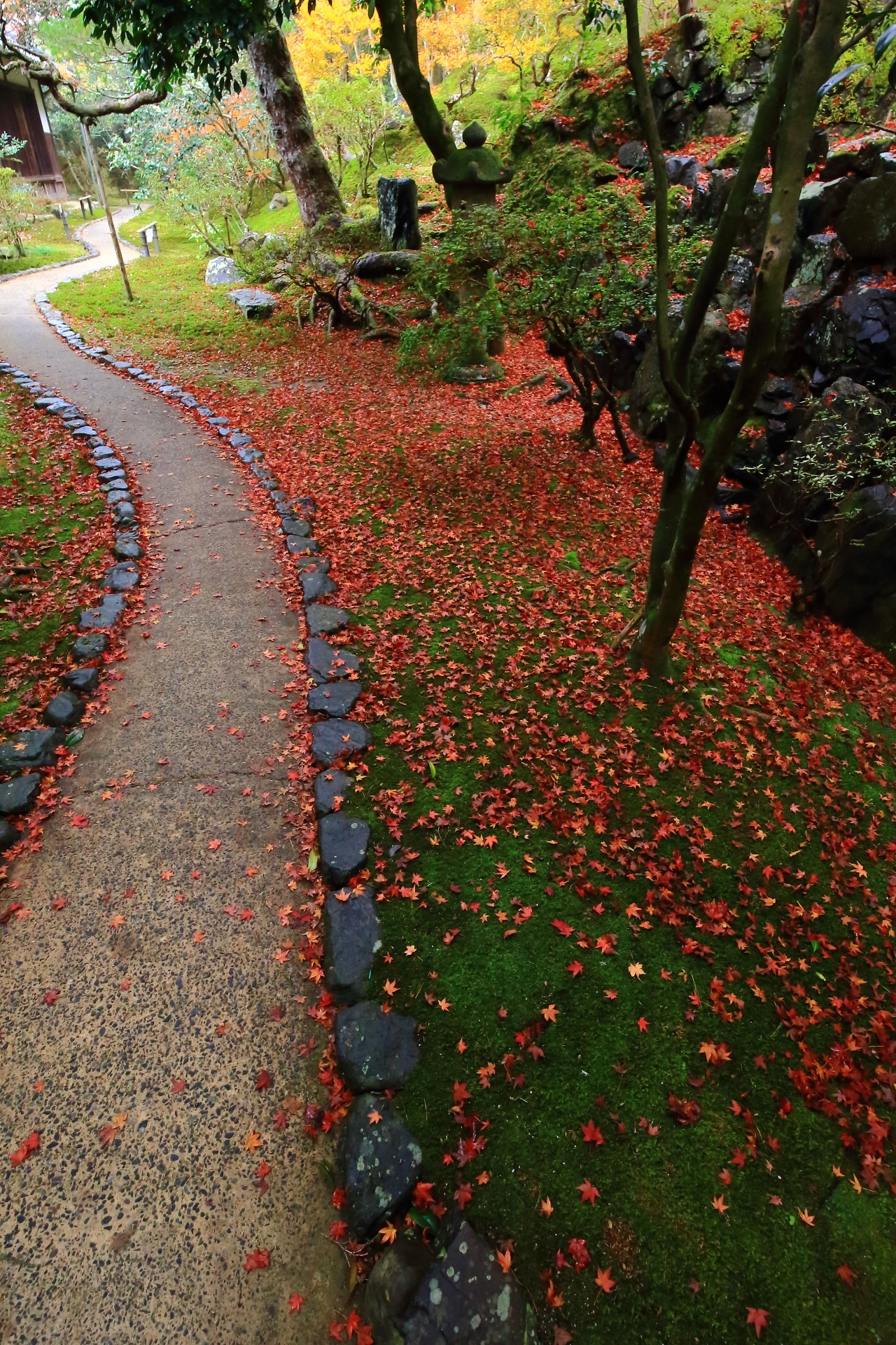 風情ある庭園を彩る絶品の散り紅葉