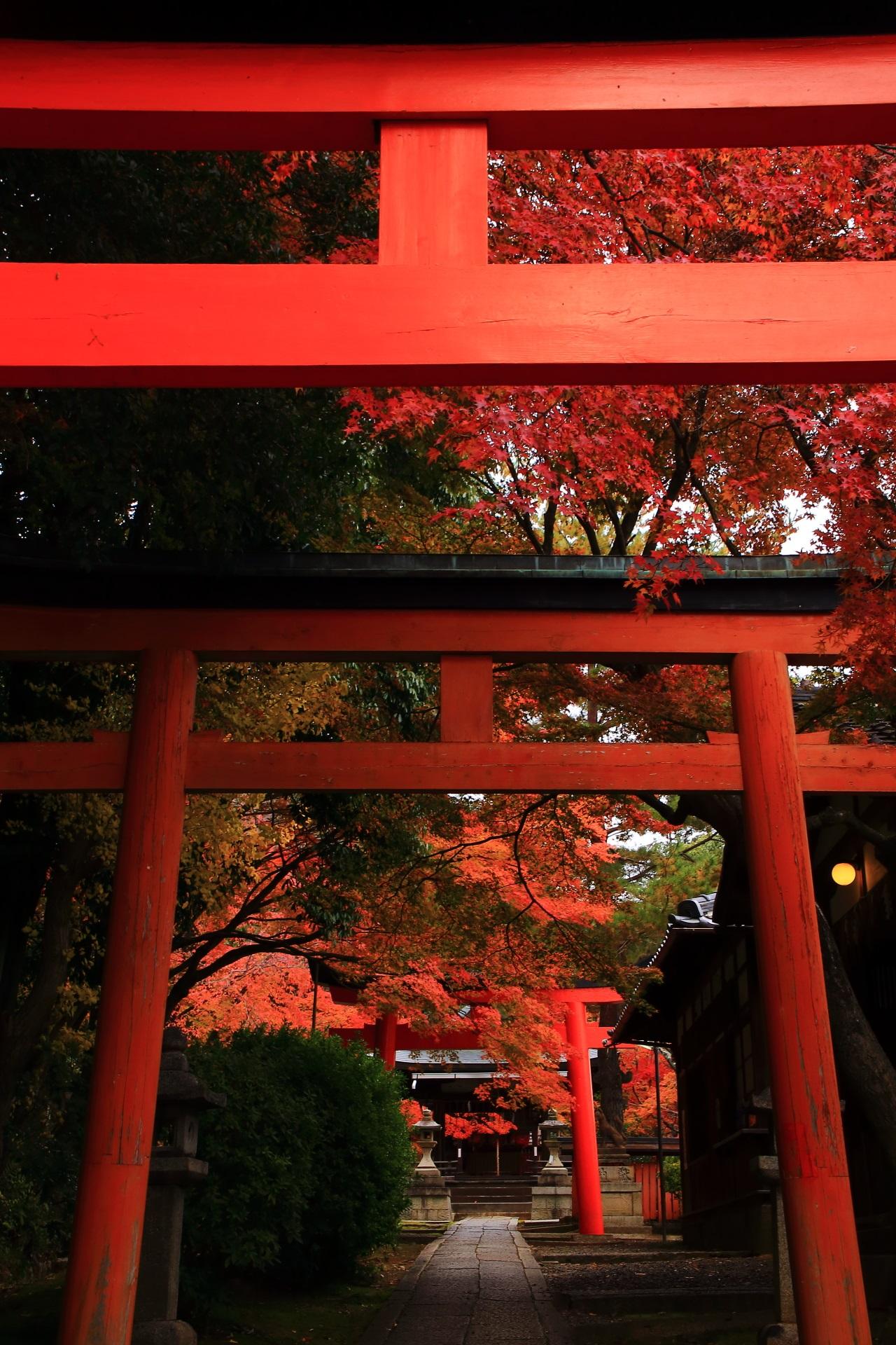 静寂と風情の感じられる紅葉の隠れた名所の竹中稲荷神社