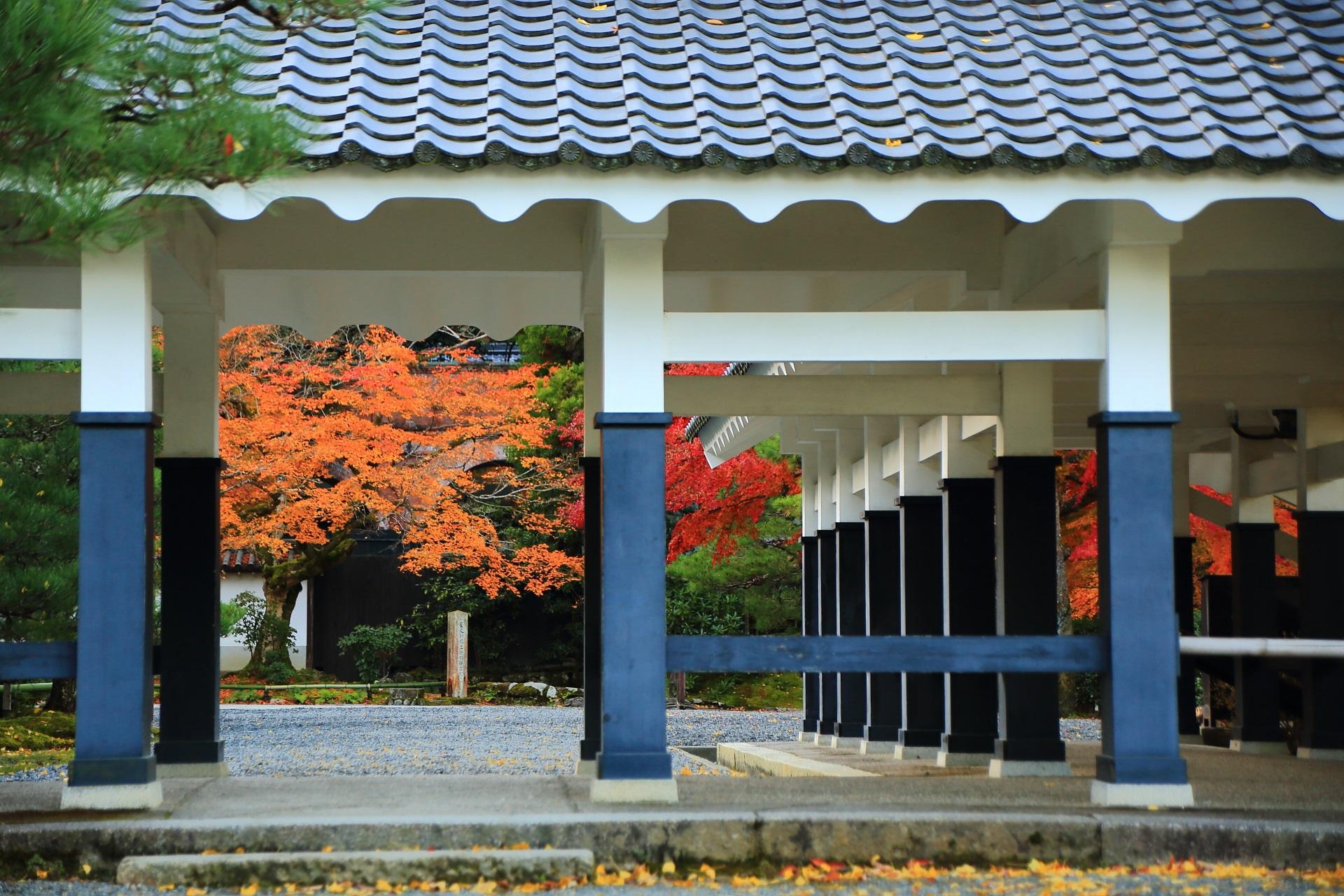 南禅寺の回廊の向こうで華やぐオレンジ色と赤色の鮮やかな紅葉
